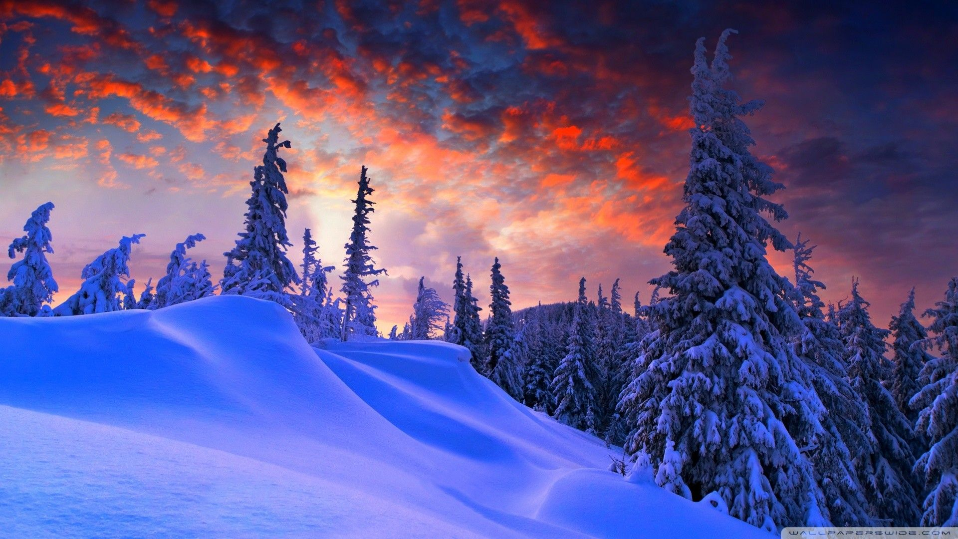 Hd Winter Wallpapers Top Free Hd Winter Backgrounds