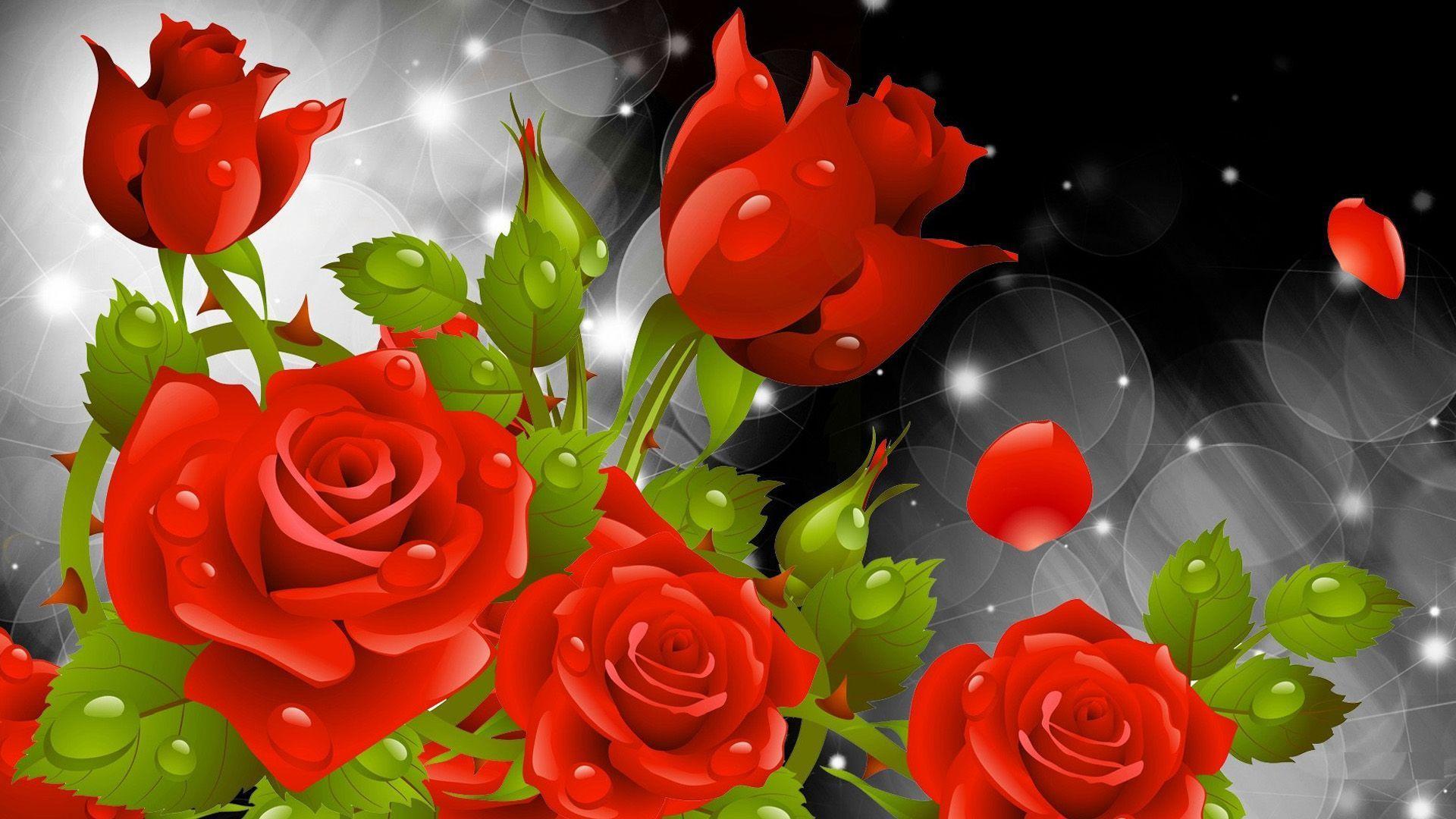 Rose Flowers Hd Wallpapers Top Free Rose Flowers Hd