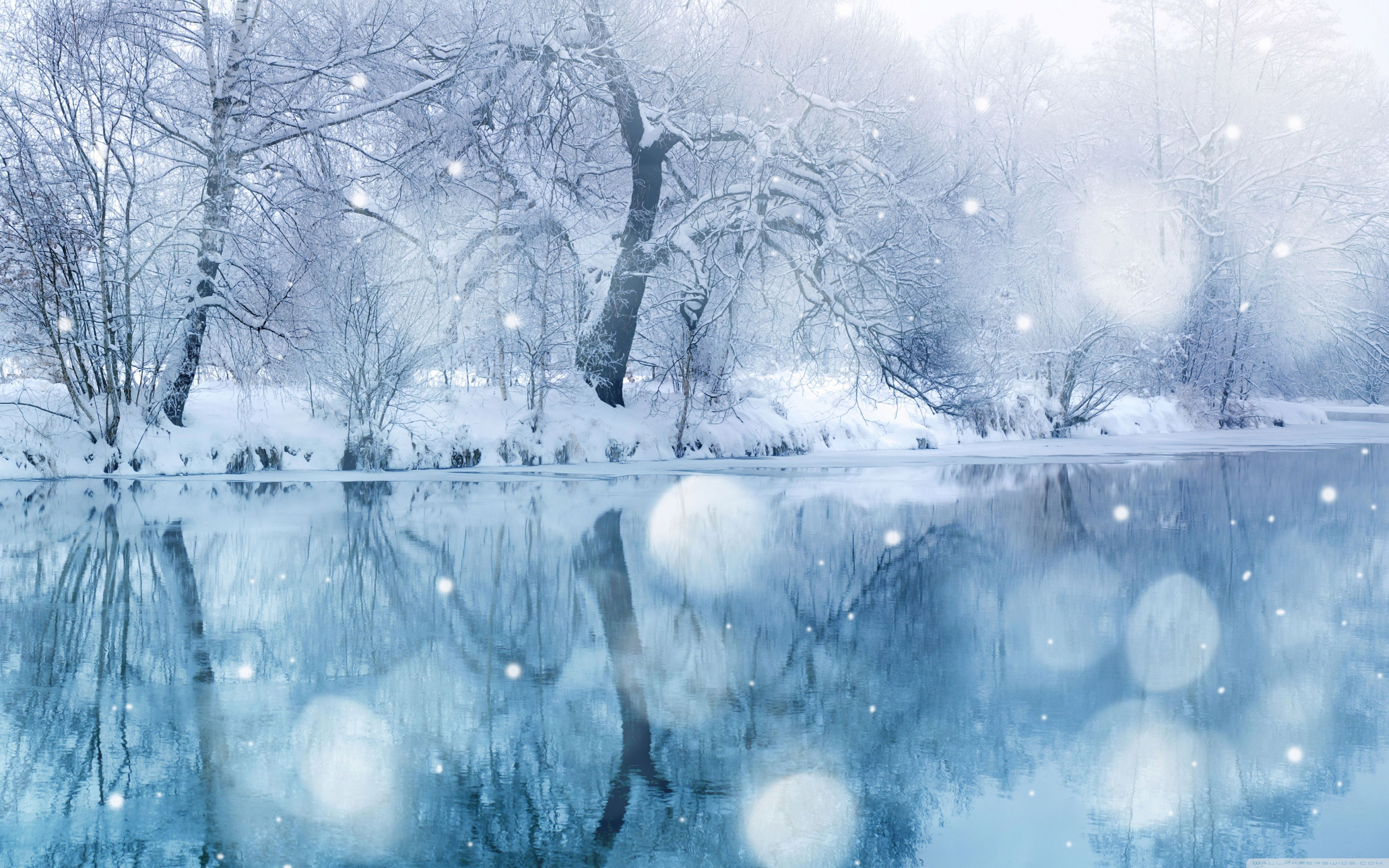 Snowfall Wallpapers Top Free Snowfall Backgrounds Wallpaperaccess