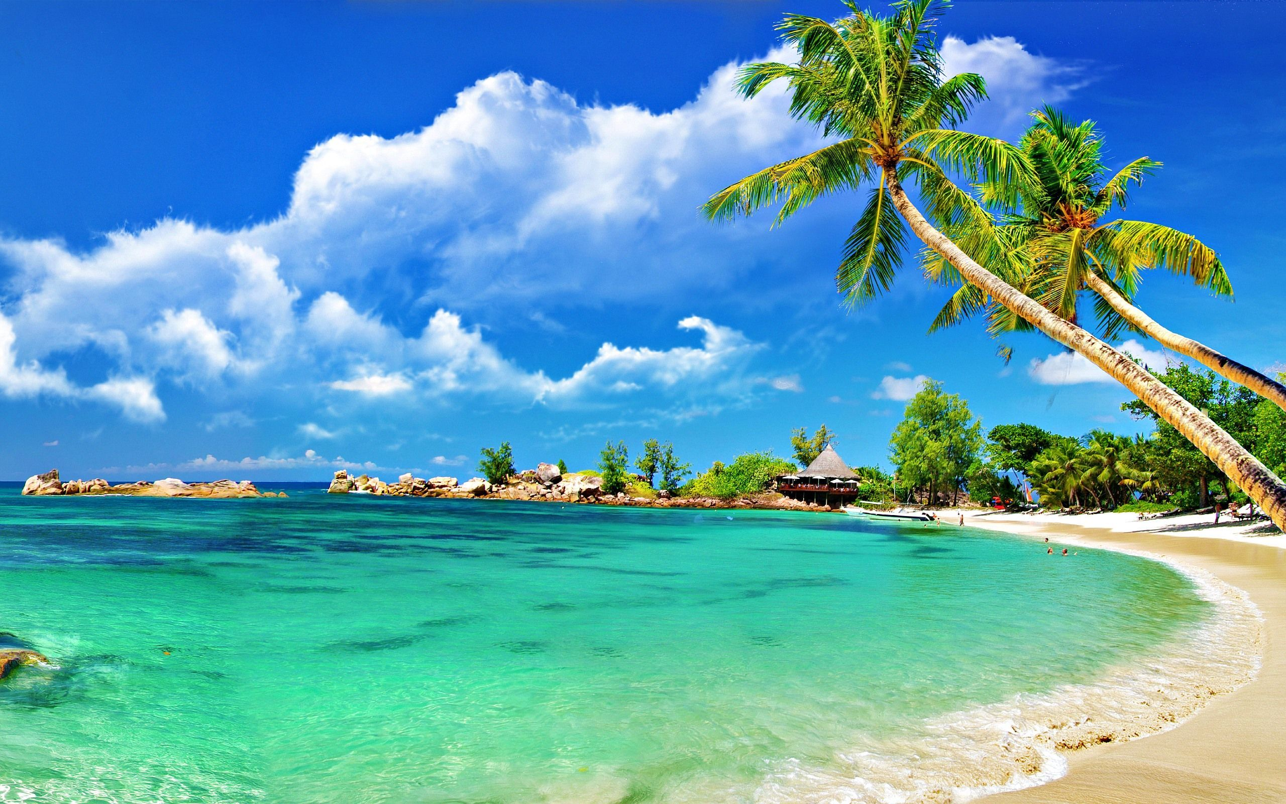 Beaches Wallpapers Top Free Beaches Backgrounds Wallpaperaccess