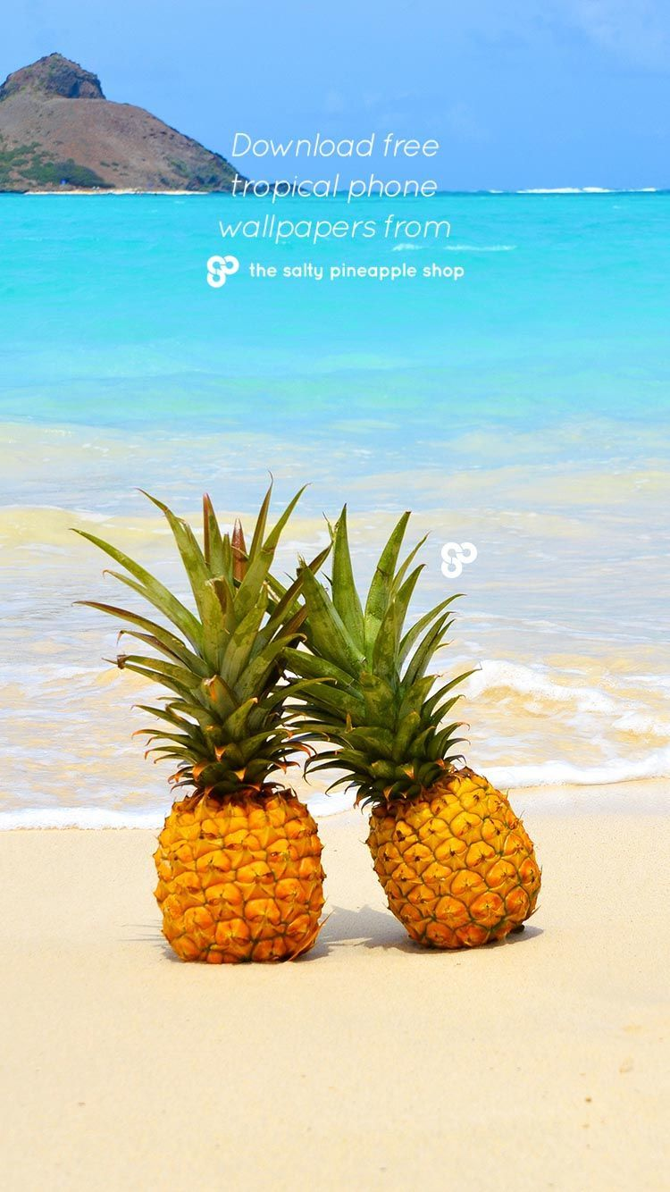 Pineapple Beach Wallpapers Top Free Pineapple Beach Backgrounds Wallpaperaccess