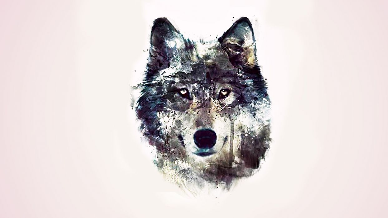 Abstract Wolf Wallpapers Top Free Abstract Wolf