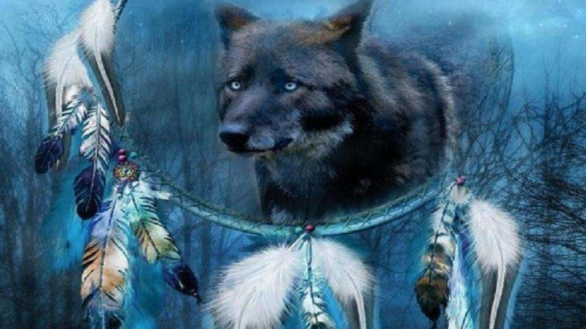 70 Best Free Native American Wolf Wallpapers Wallpaperaccess