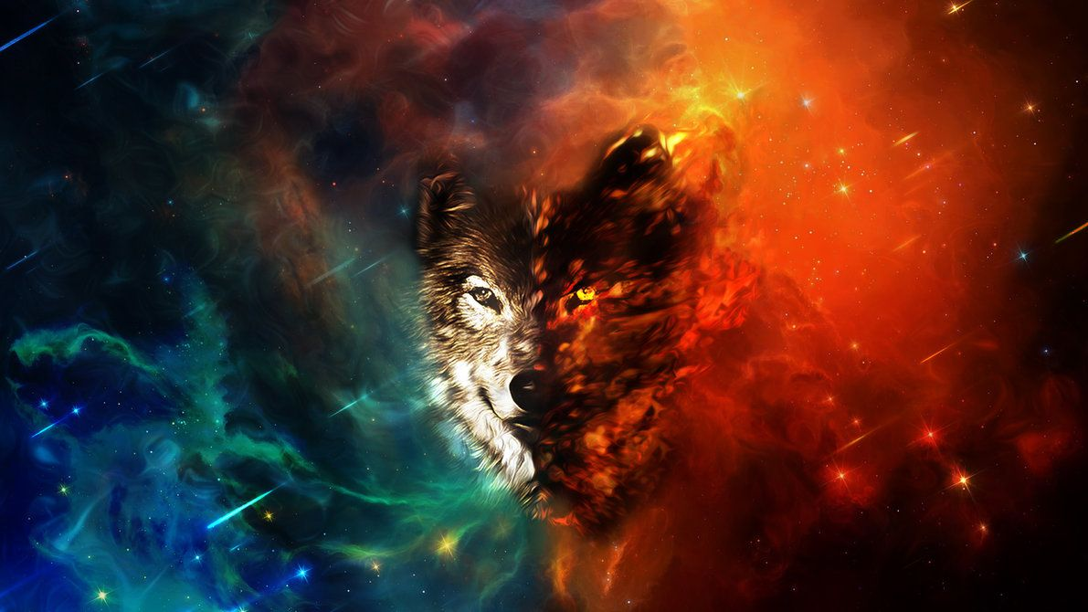 Abstract Wolf Wallpapers Top Free Abstract Wolf Backgrounds