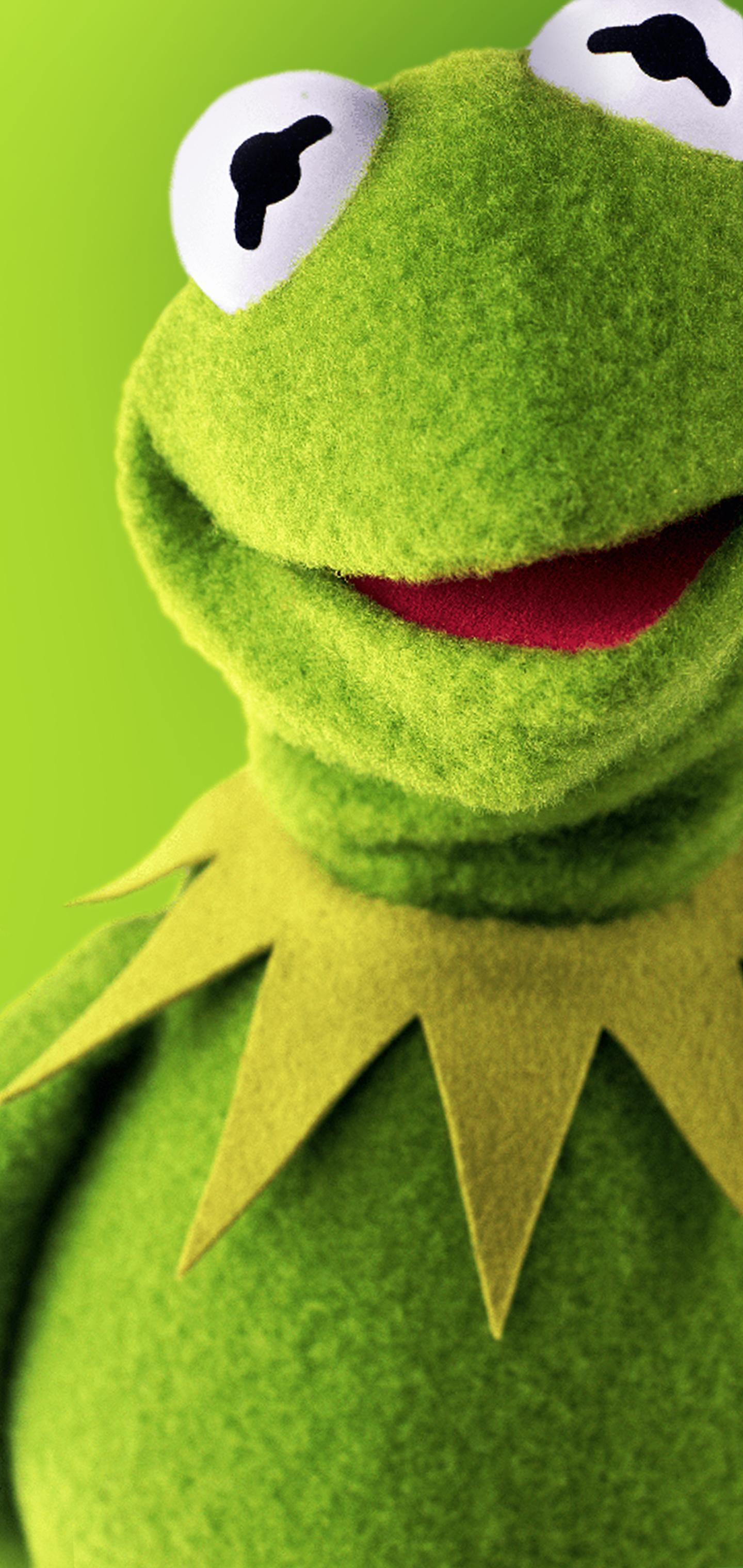 Kermit Wallpapers Top Free Kermit Backgrounds