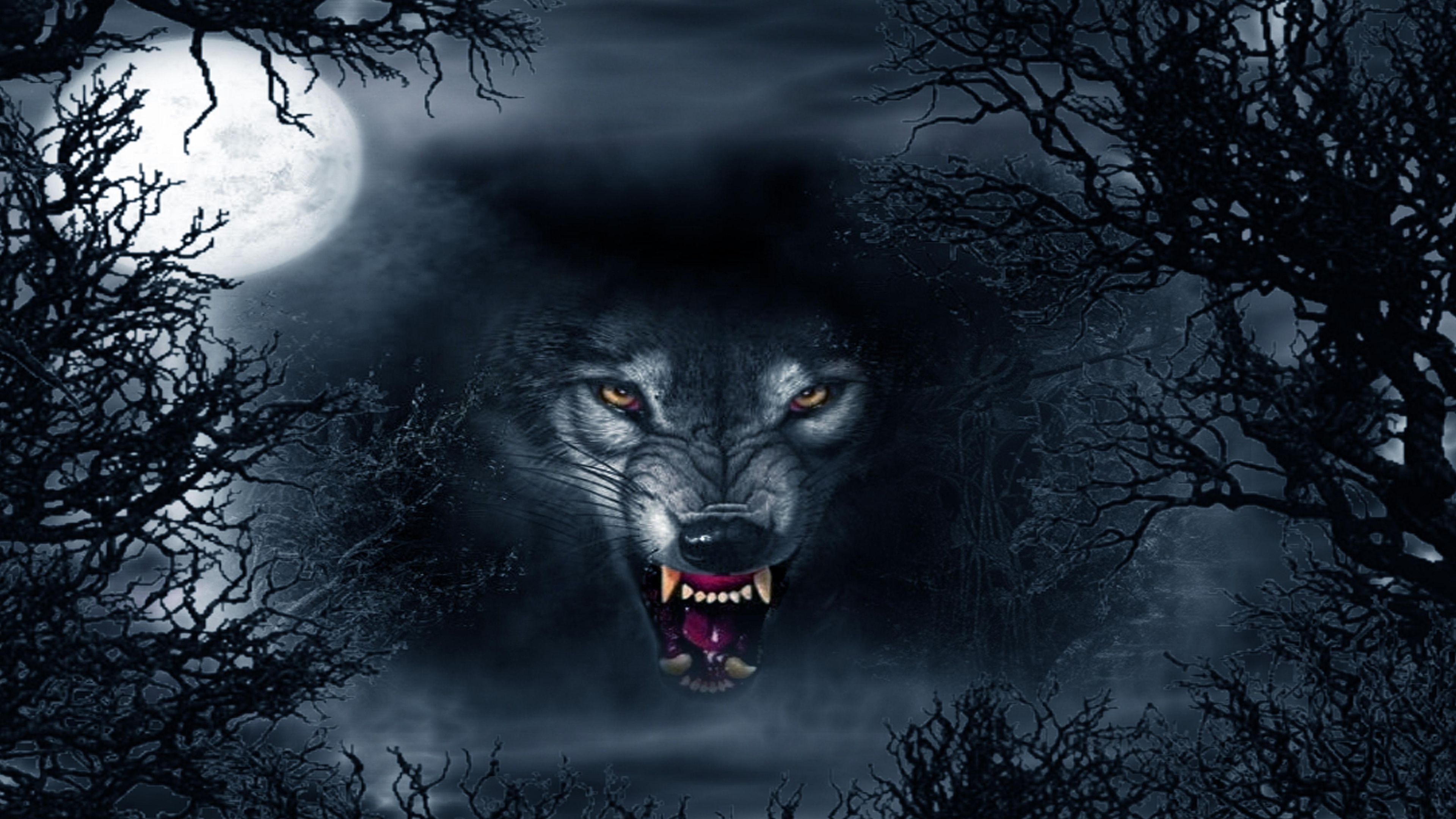 Dark Evil Wolf Wallpapers Top Free Dark Evil Wolf Backgrounds Wallpaperaccess