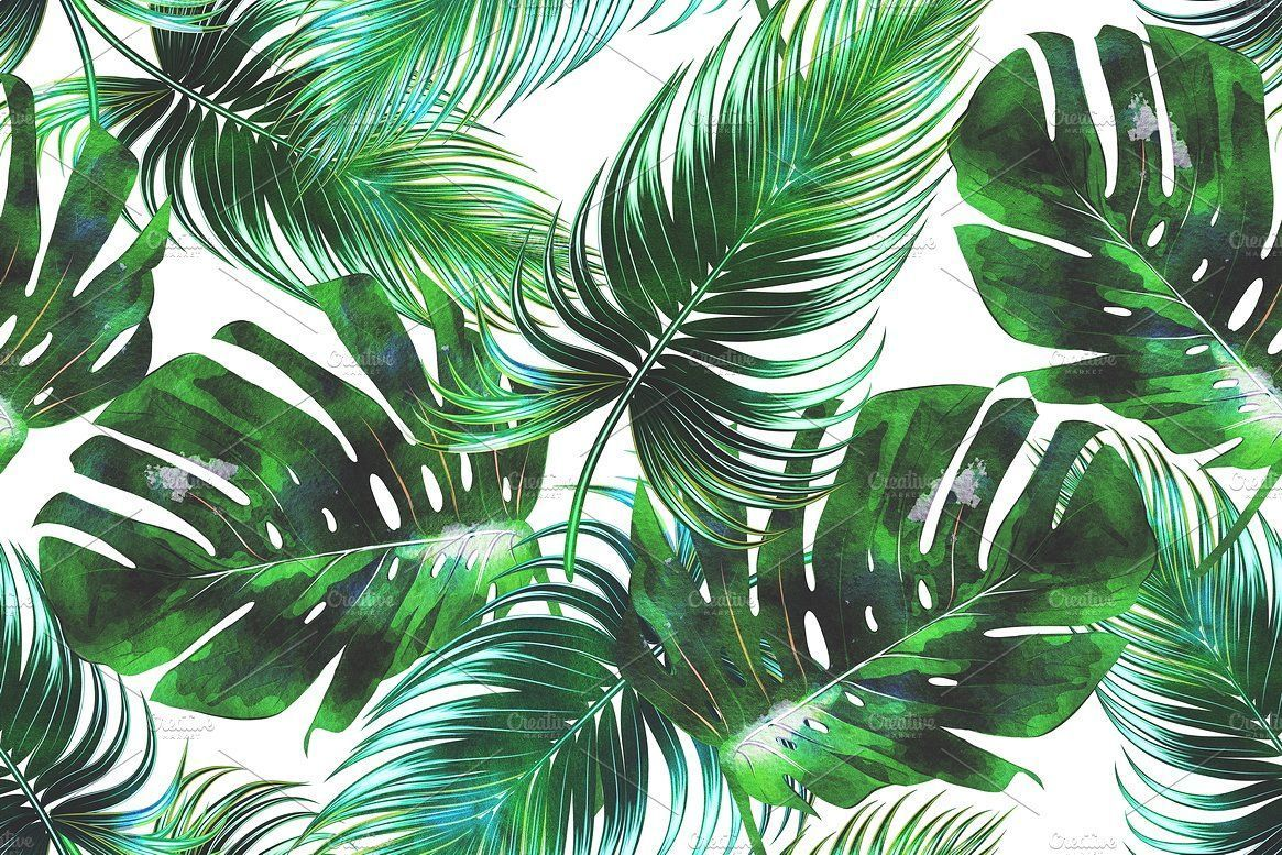 Tropical Leaf Wallpapers Top Free Tropical Leaf Backgrounds Wallpaperaccess 4 years ago on october 26, 2016. tropical leaf wallpapers top free