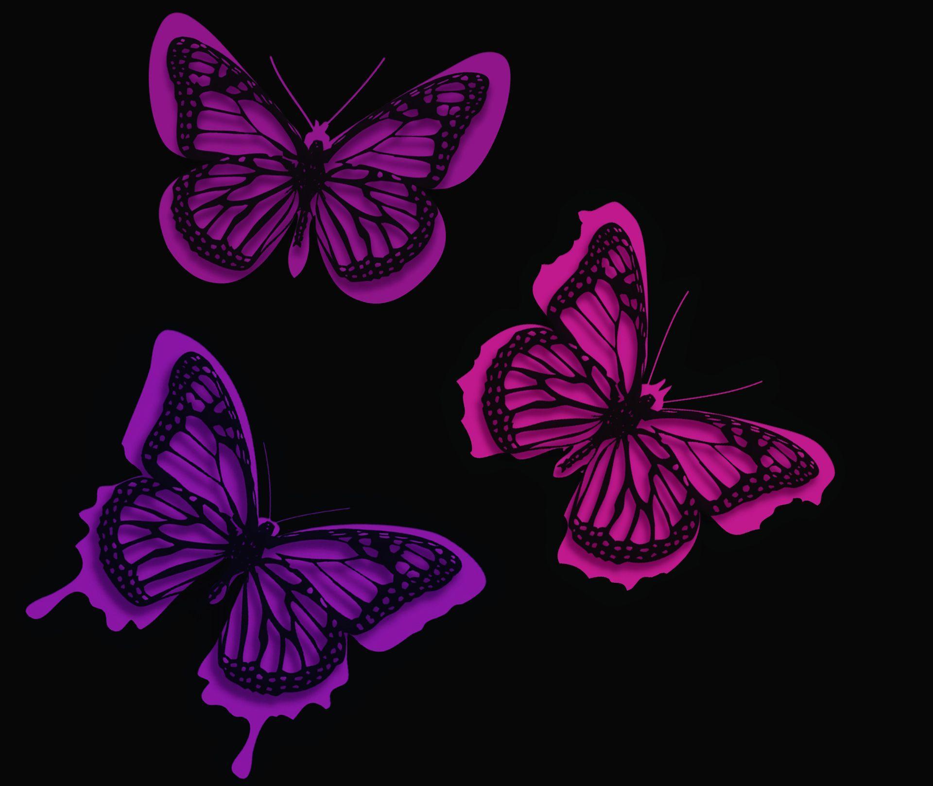 Neon Butterfly Desktop Wallpapers Top Free Neon Butterfly Desktop Backgrounds Wallpaperaccess