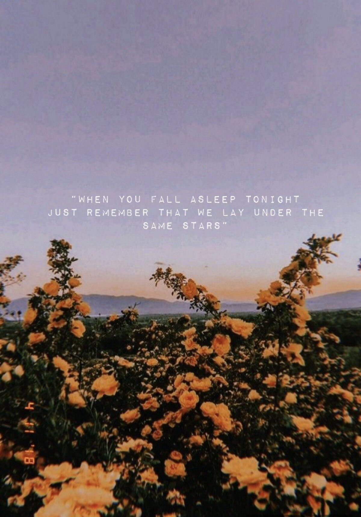 Aesthetic Quotes Tumblr Wallpapers Top Free Aesthetic