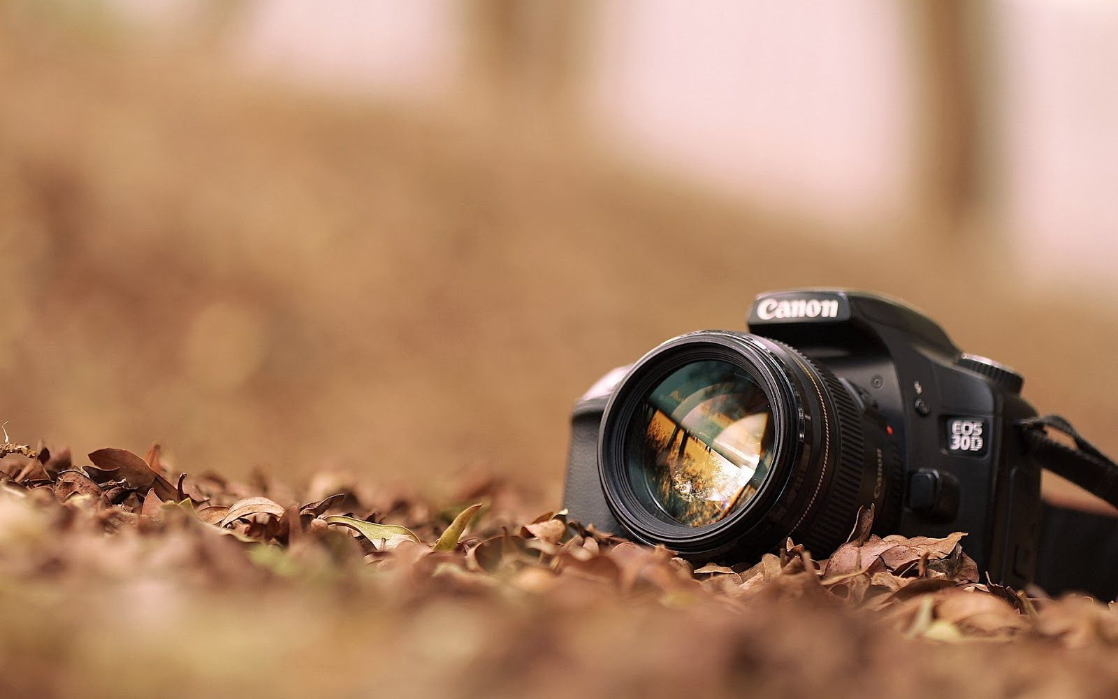 HD Photography Wallpapers - Top Free HD Photography Backgrounds -  WallpaperAccess
