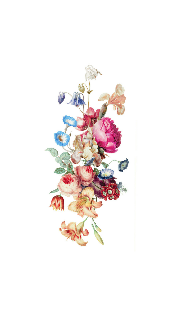 Flowers Iphone 8 Plus Wallpapers Top Free Flowers Iphone 8