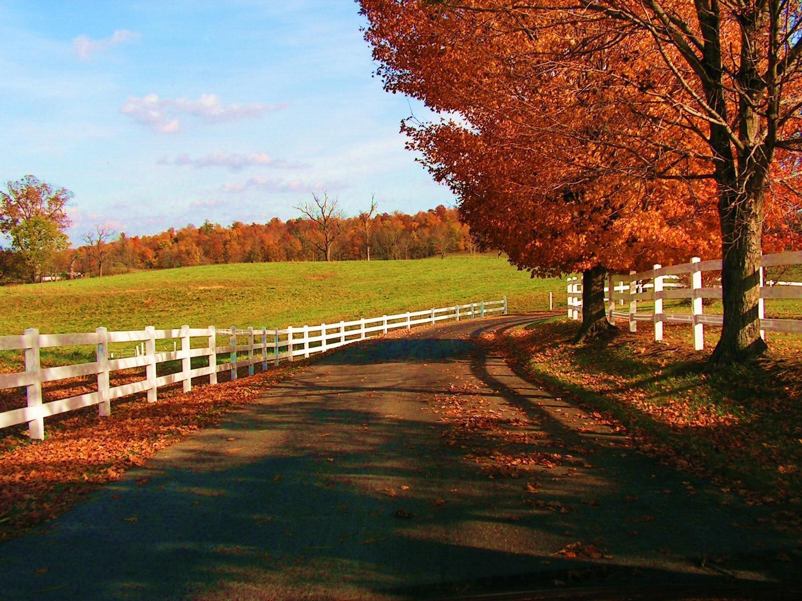 Autumn Season Wallpapers Top Free Autumn Season