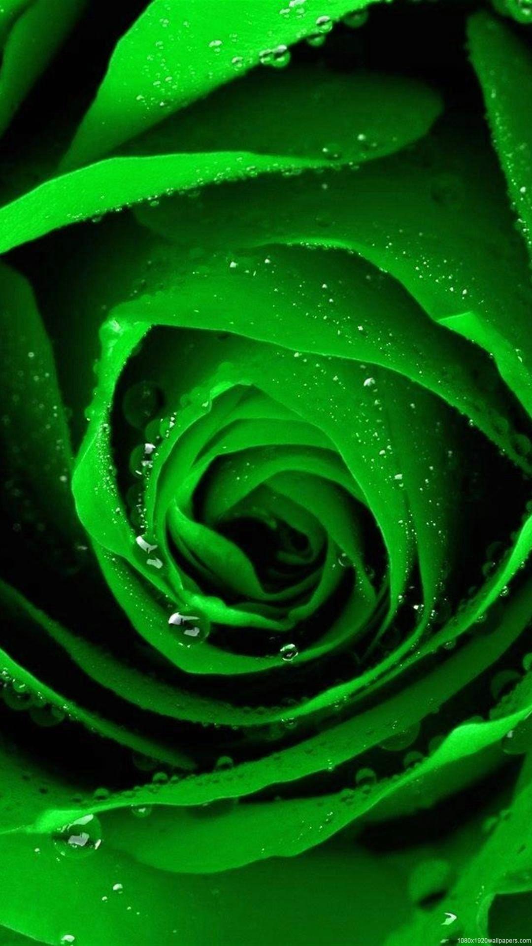 Green Smartphone Wallpapers Top Free Green Smartphone