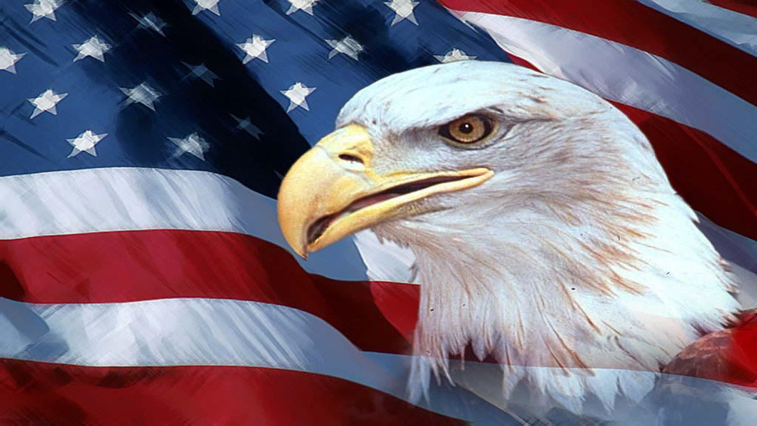 American Flag Eagles Wallpapers - Top Free American Flag