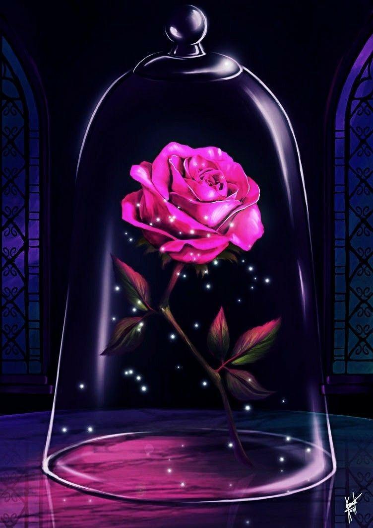 Rose Kawaii Wallpapers Top Free Rose Kawaii Backgrounds