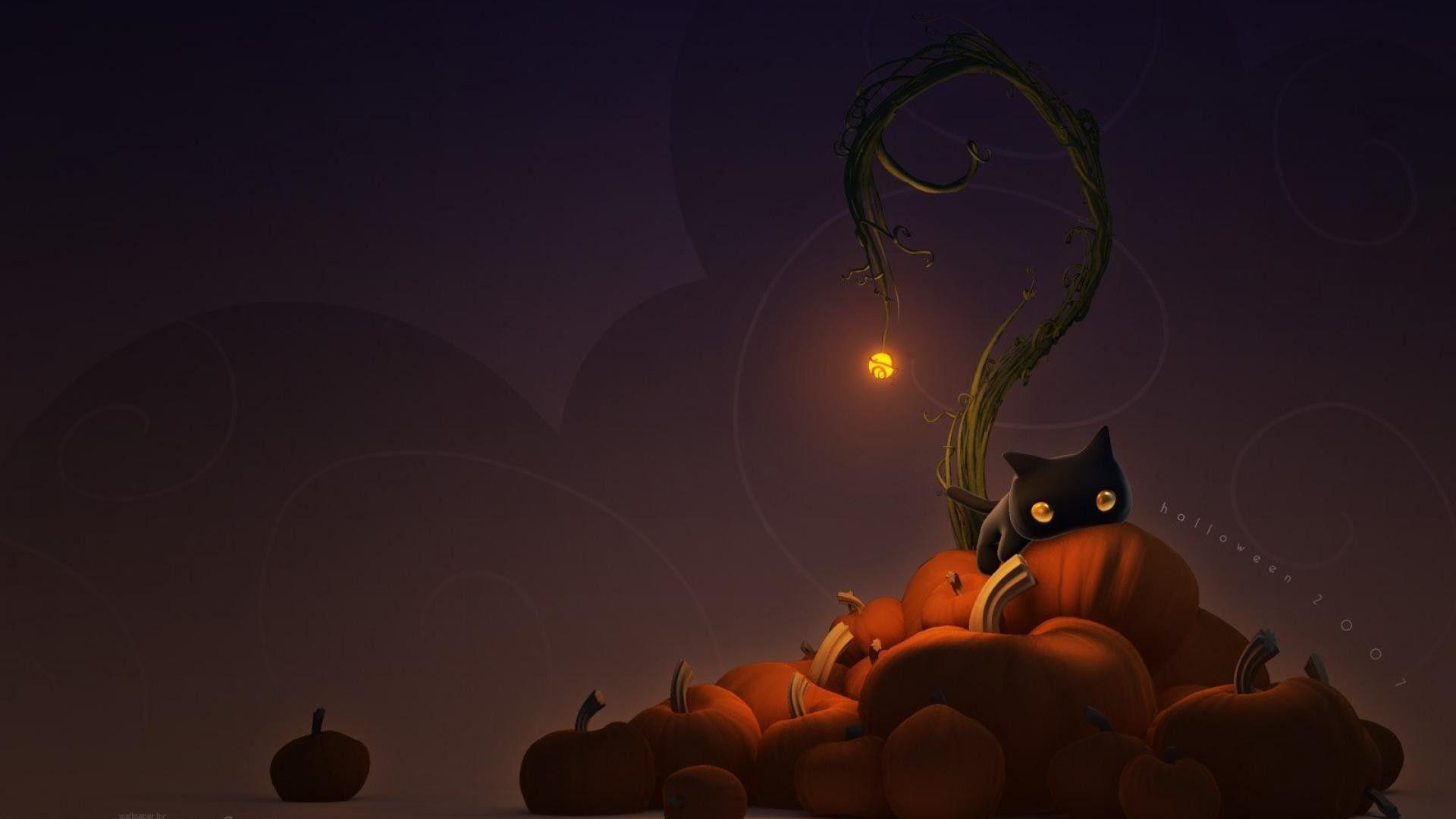 Black Cat Halloween Wallpapers Top Free Black Cat Halloween Backgrounds Wallpaperaccess