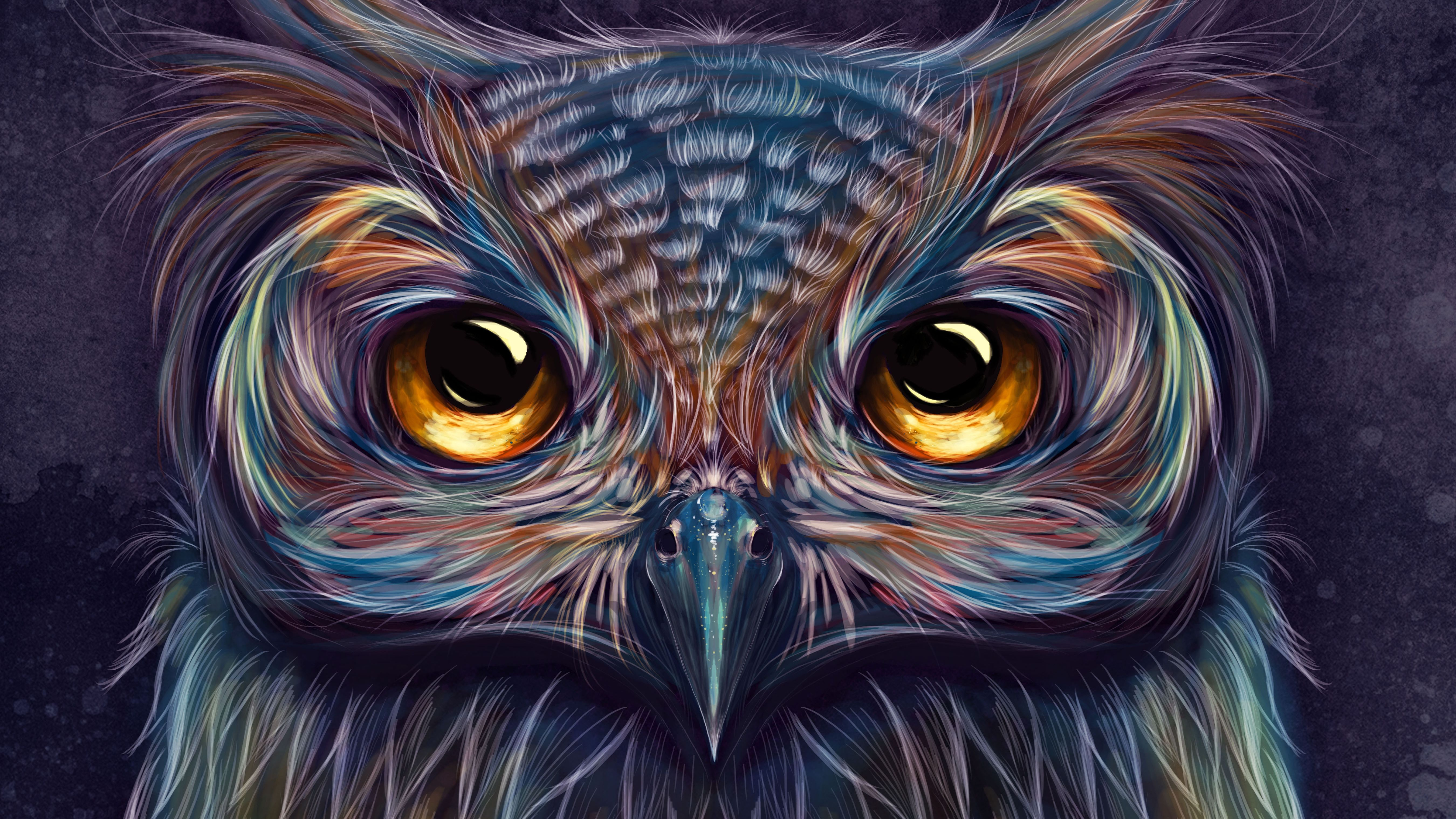 Art Owl Wallpapers Top Free Art Owl Backgrounds Wallpaperaccess