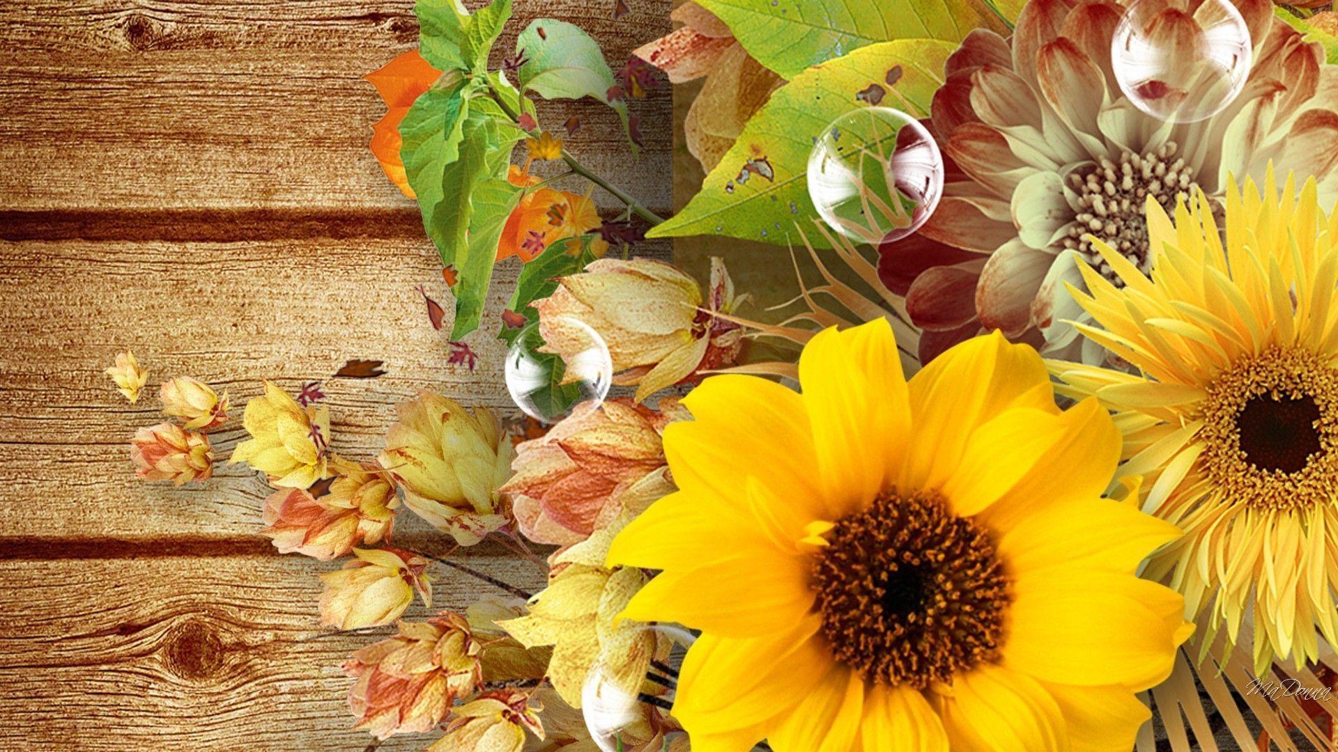Autumn Sunflower Wallpapers Top Free Autumn Sunflower Backgrounds Wallpaperaccess