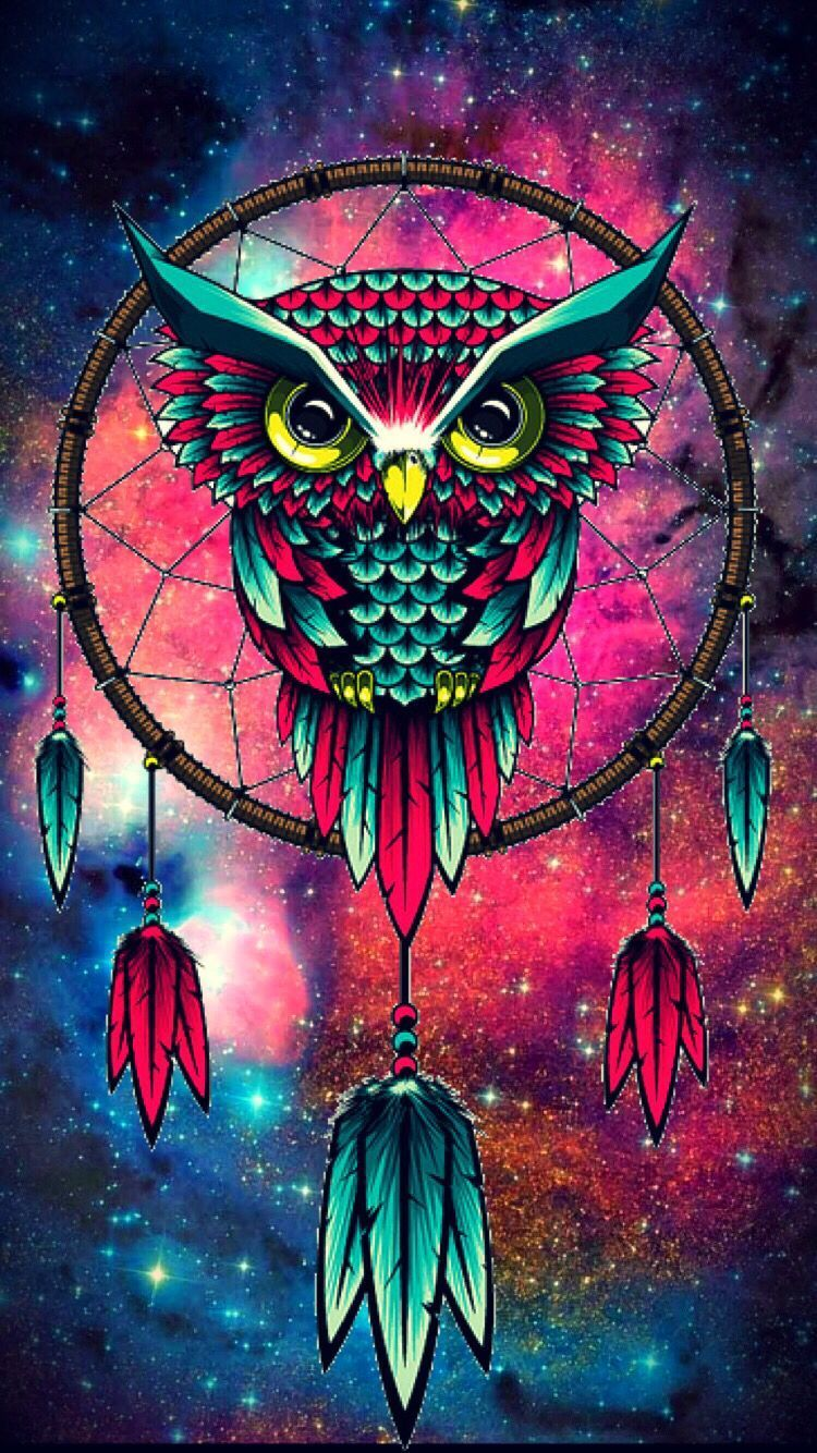 Colorful Owl Wallpapers Top Free Colorful Owl Backgrounds