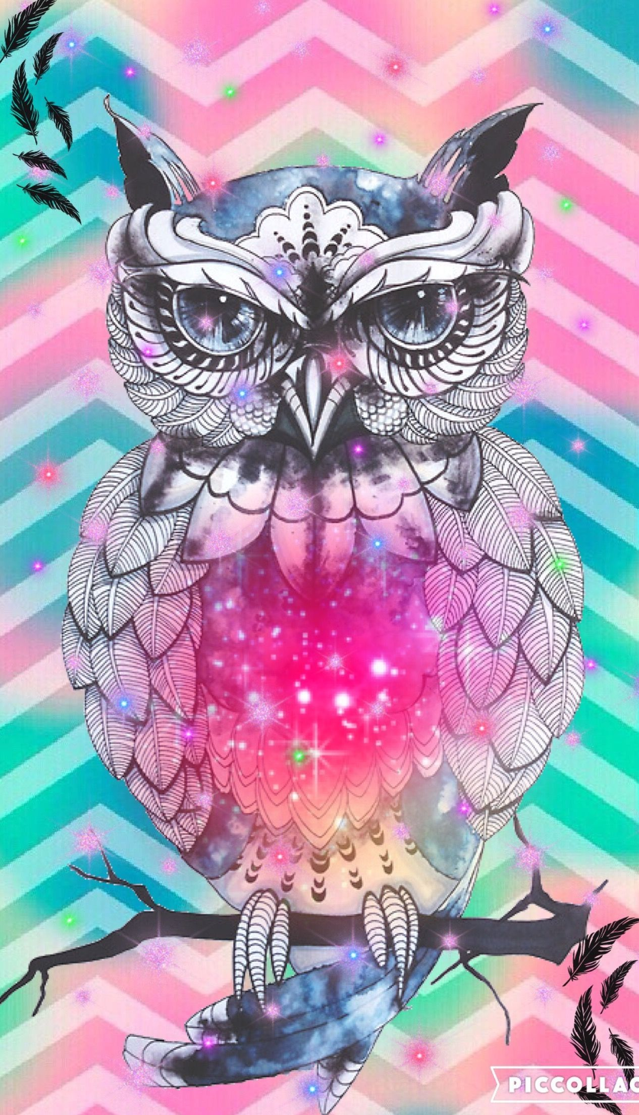 Girly Owl Wallpapers Top Free Girly Owl Backgrounds