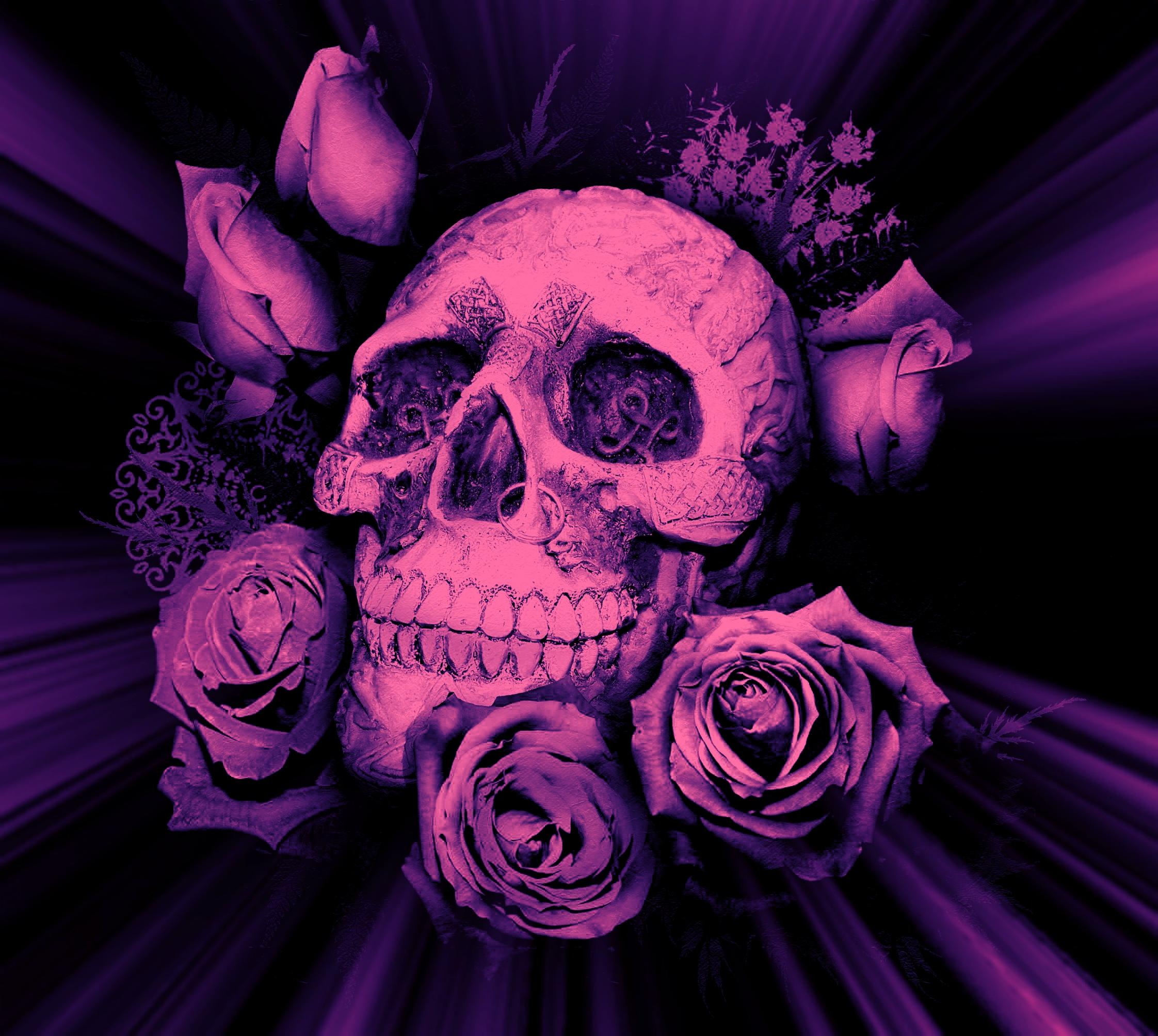 Skulls And Roses Wallpapers Top Free Skulls And Roses