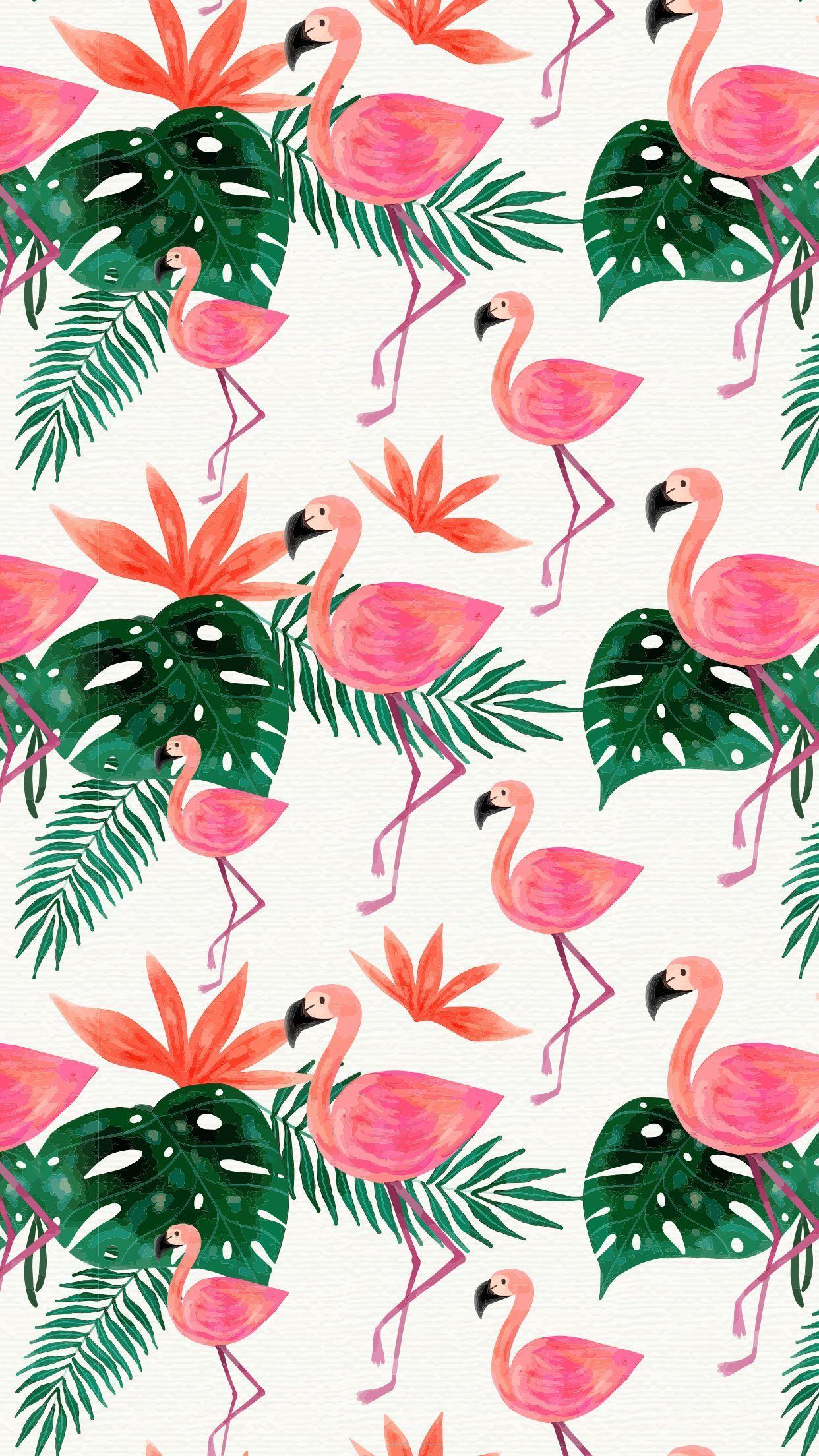 Tropical Flamingo Phone Wallpapers Top Free Tropical