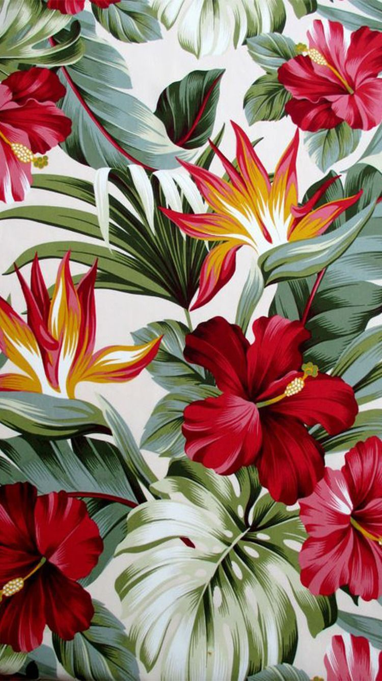 Tropical Flowers Tumblr Wallpapers Top Free Tropical Flowers Tumblr Backgrounds Wallpaperaccess Green leaf on white sand during daytime. tropical flowers tumblr wallpapers
