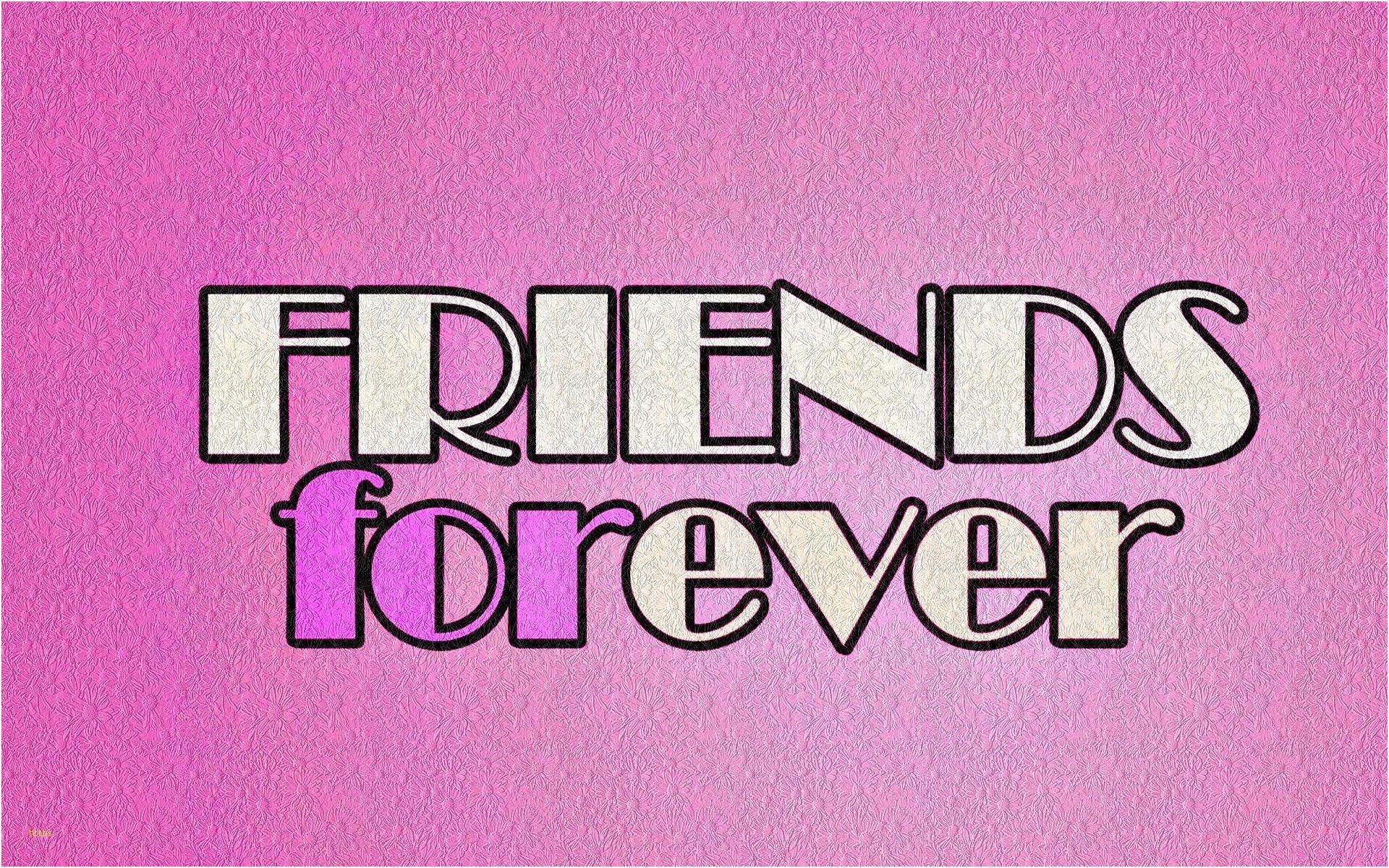 1920x1200 Hình nền người bạn tốt nhất Thanh lịch Người bạn tốt nhất mãi mãi - Những người bạn