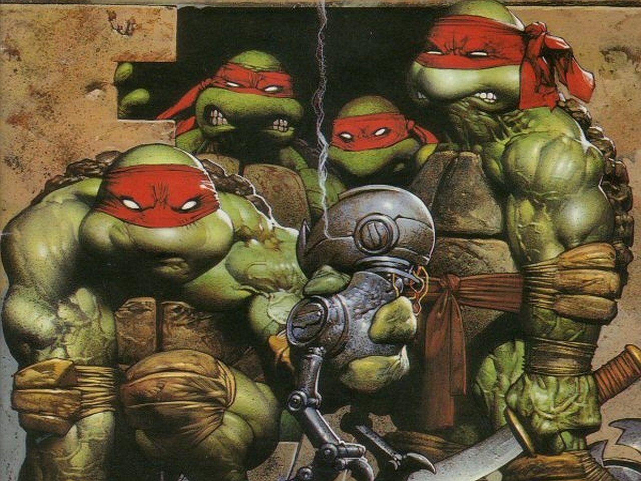 Ninja Turtles 2 Wallpapers Top Free Ninja Turtles 2 Backgrounds