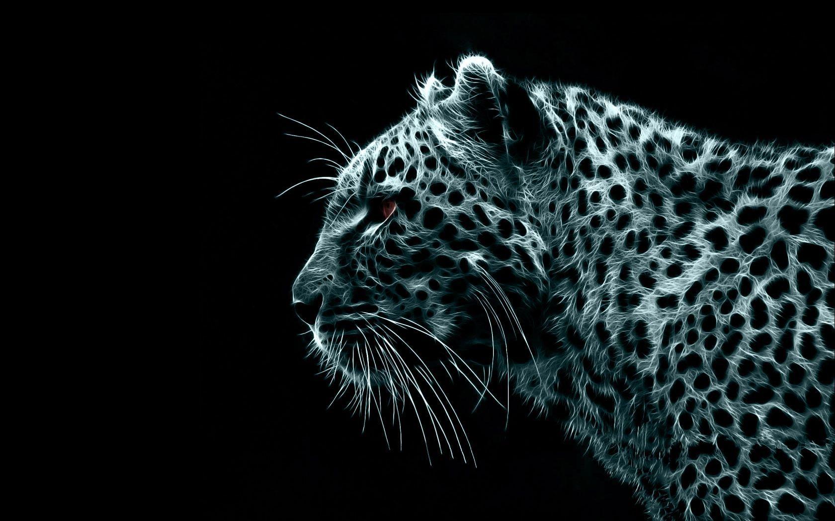 Dark Animals Wallpapers Top Free Dark Animals Backgrounds Wallpaperaccess