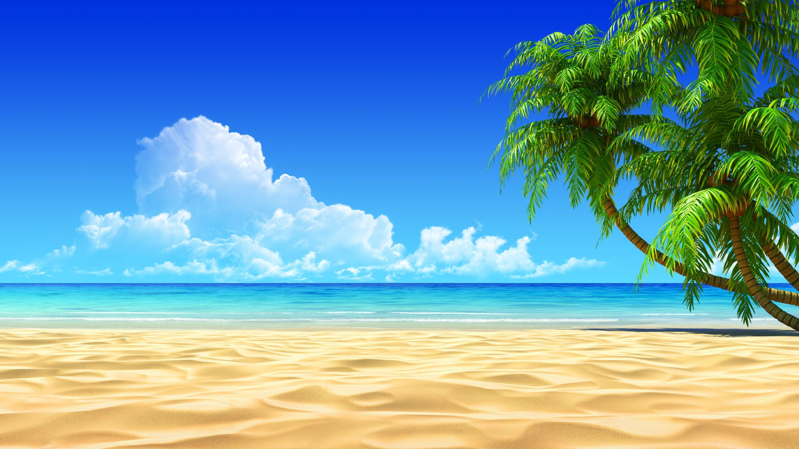 Beach Pc Wallpapers Top Free Beach Pc Backgrounds Wallpaperaccess