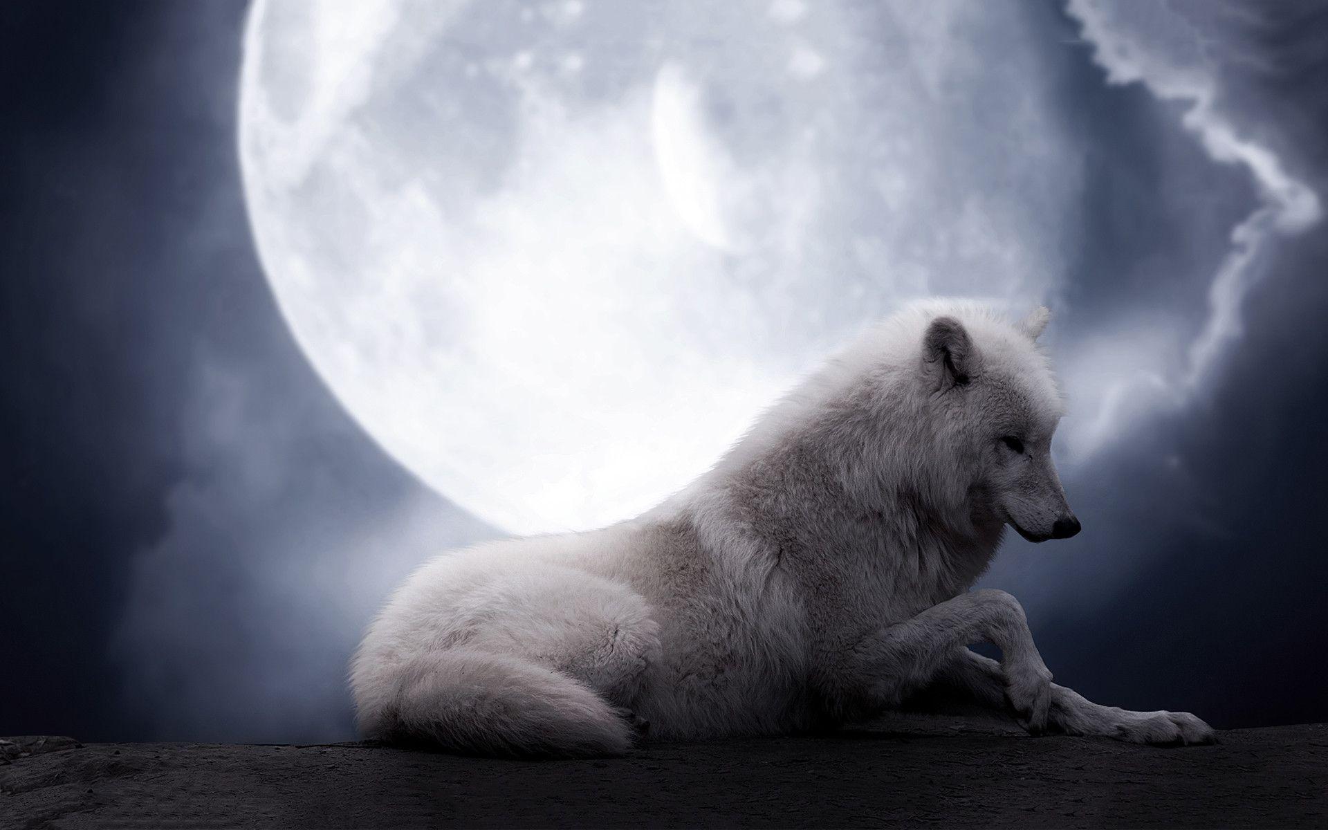 3000x1875 Anime Wolf Wallpaper