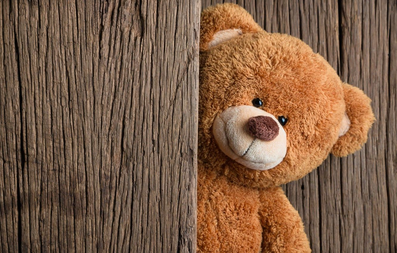 Teddy Bear Wallpapers Top Free Teddy Bear Backgrounds Wallpaperaccess