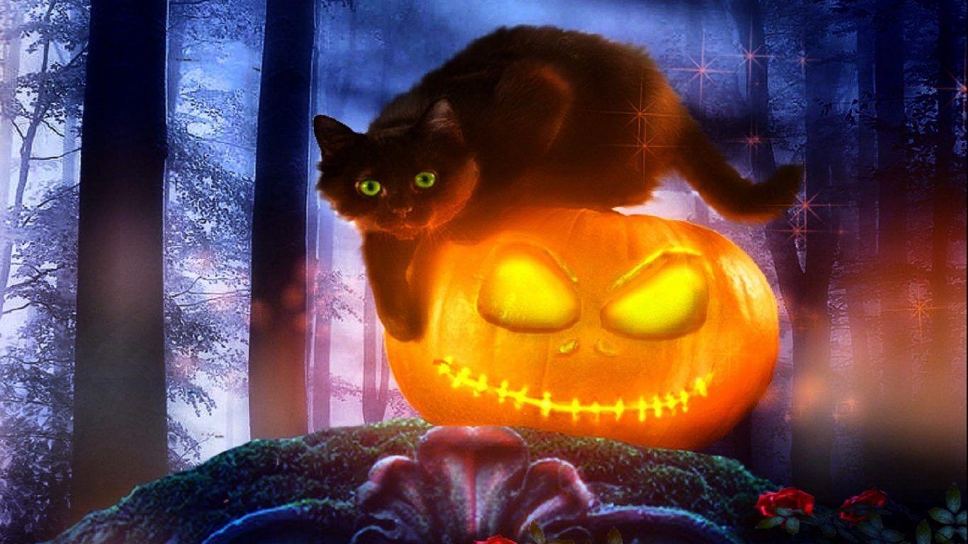 картинки хэллоуина с кошками самому названию