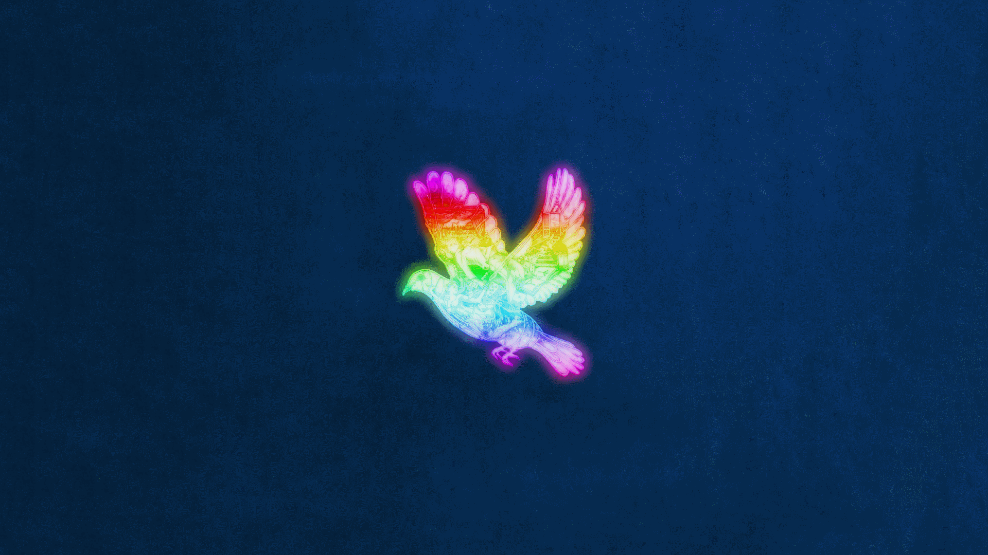 Coldplay Wallpapers Top Free Coldplay Backgrounds