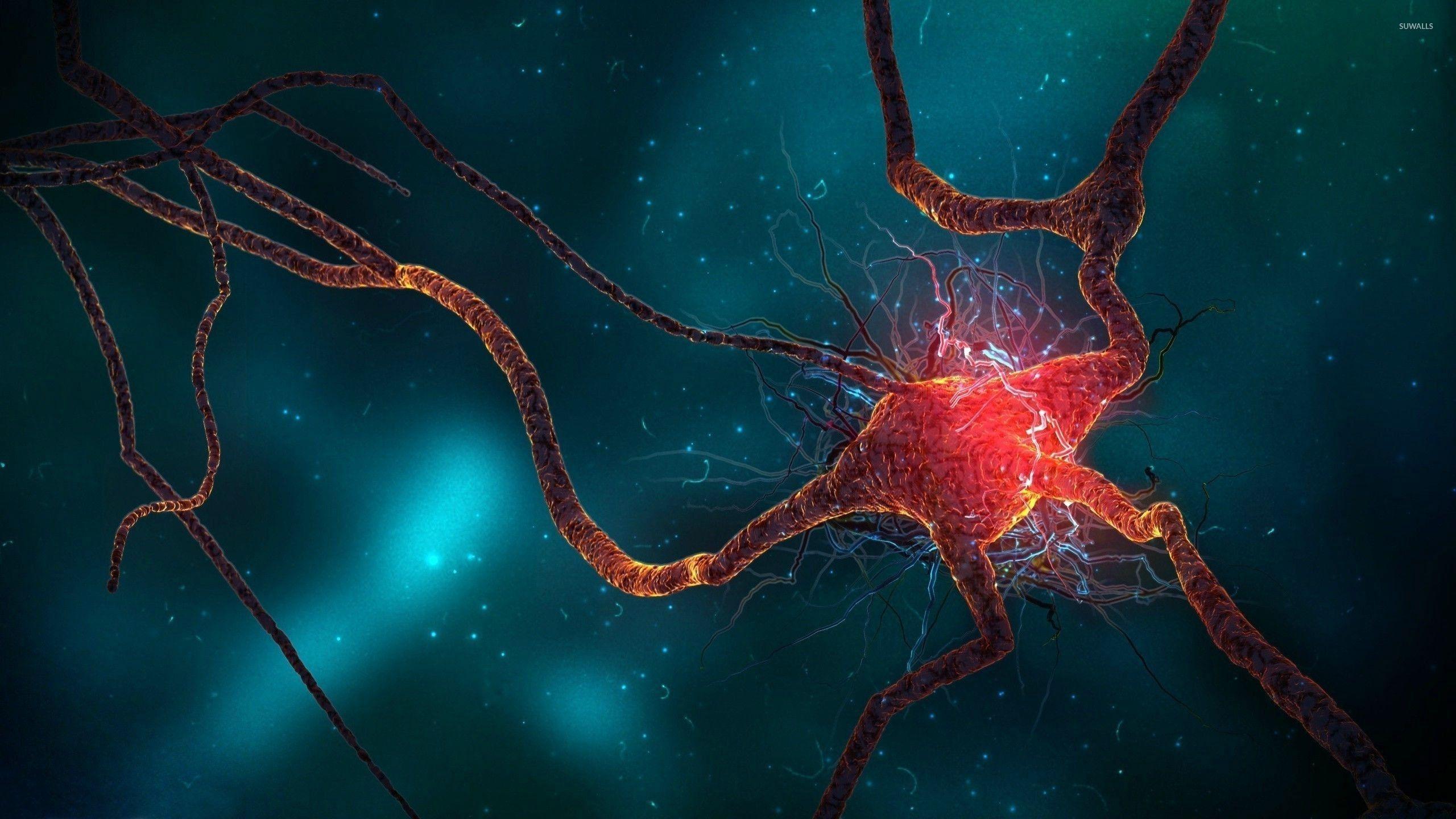 Biology Wallpapers - Top Free Biology