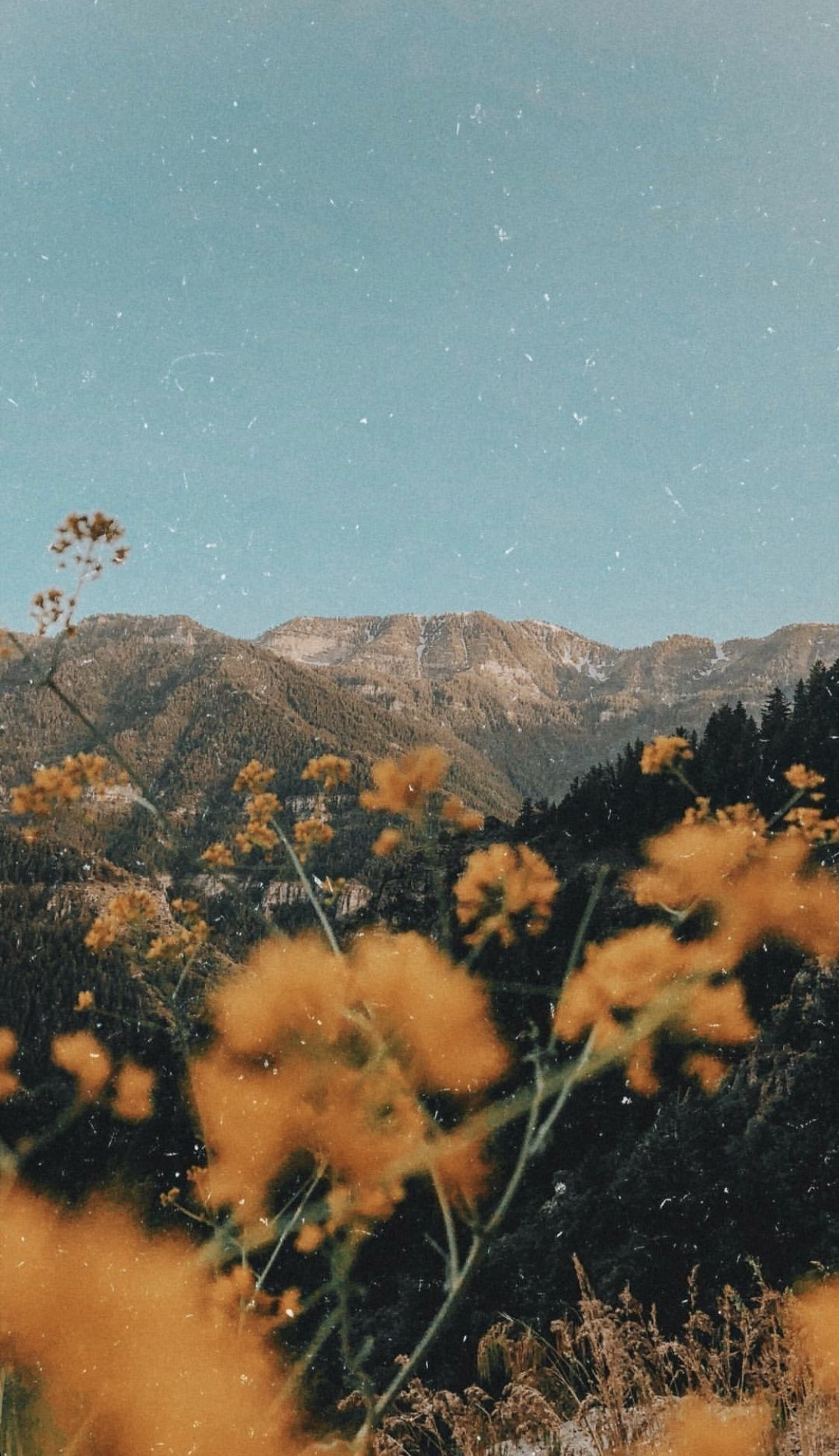 Movie Aesthetic Wallpapers Top Free Movie Aesthetic Backgrounds Wallpaperaccess