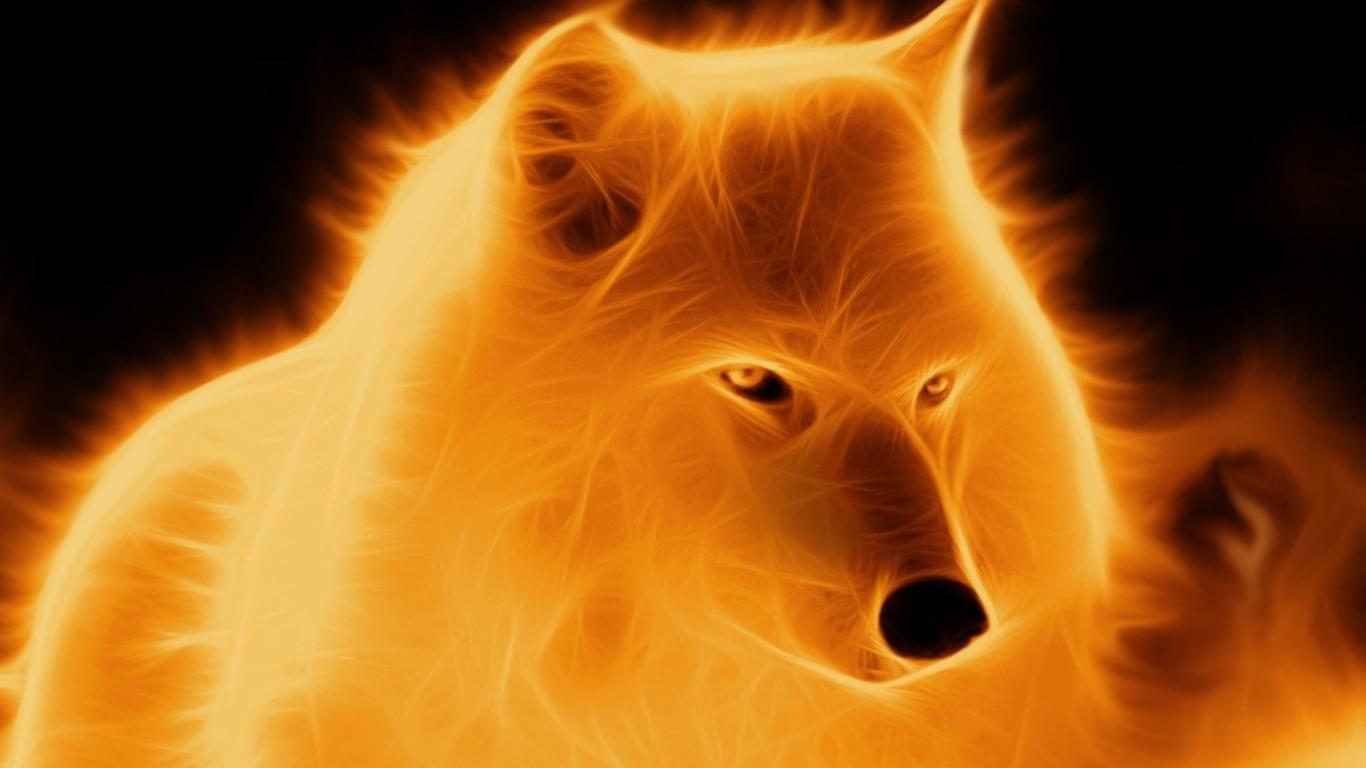 1024x768 Fire Wolf Wallpaper By Darkwolf1984 On DeviantArt