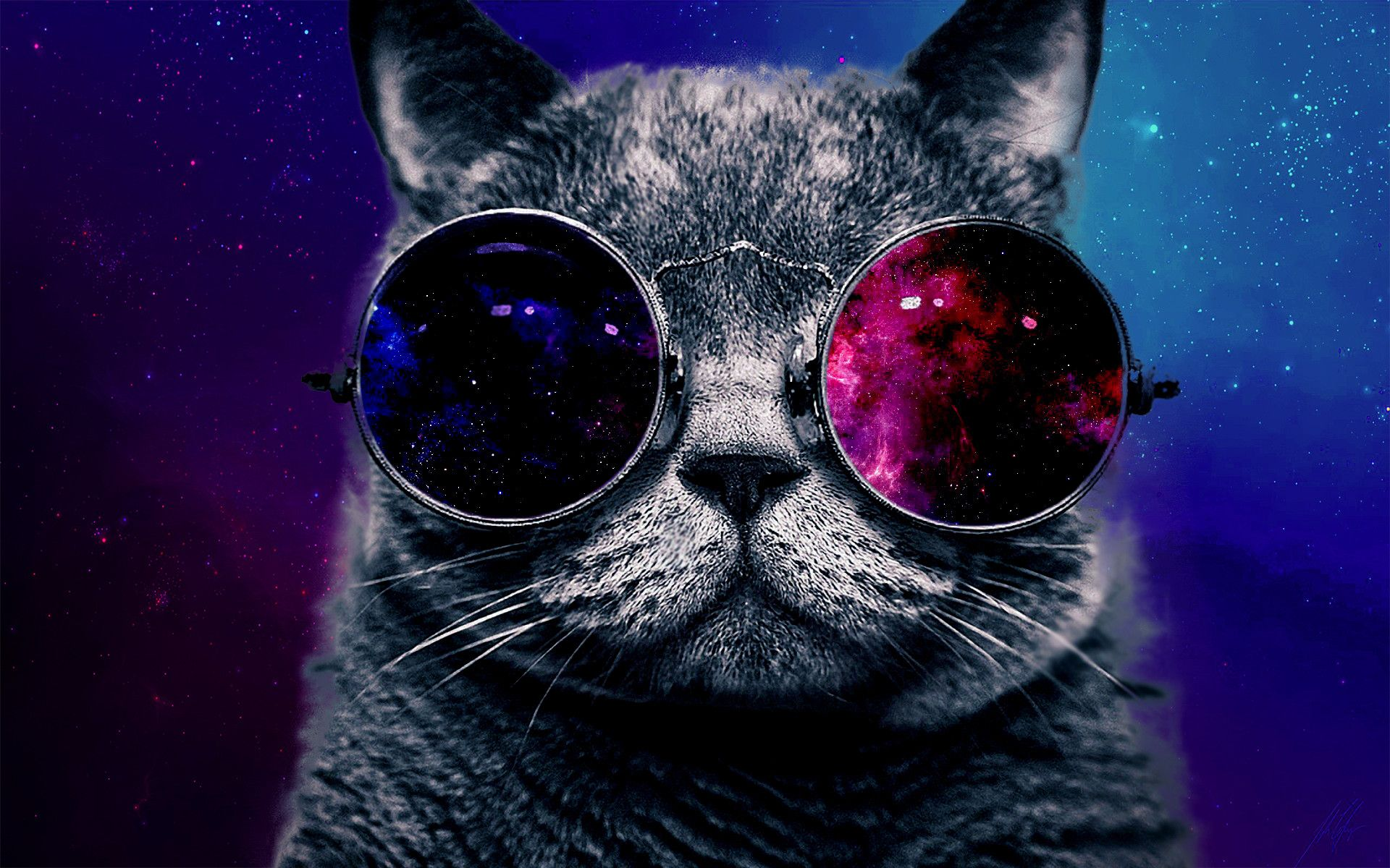72 Best Free Hipster Galaxy Cat Wallpapers