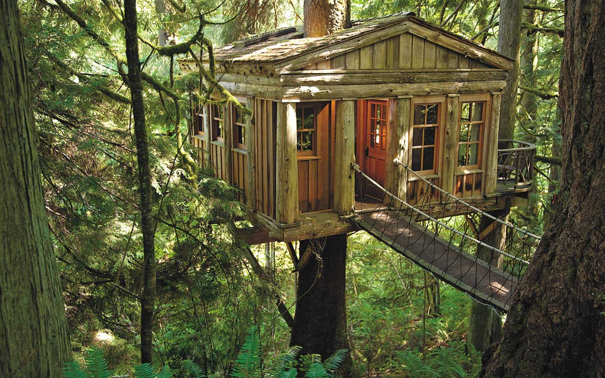 Tree House Wallpapers Top Free Tree House Backgrounds