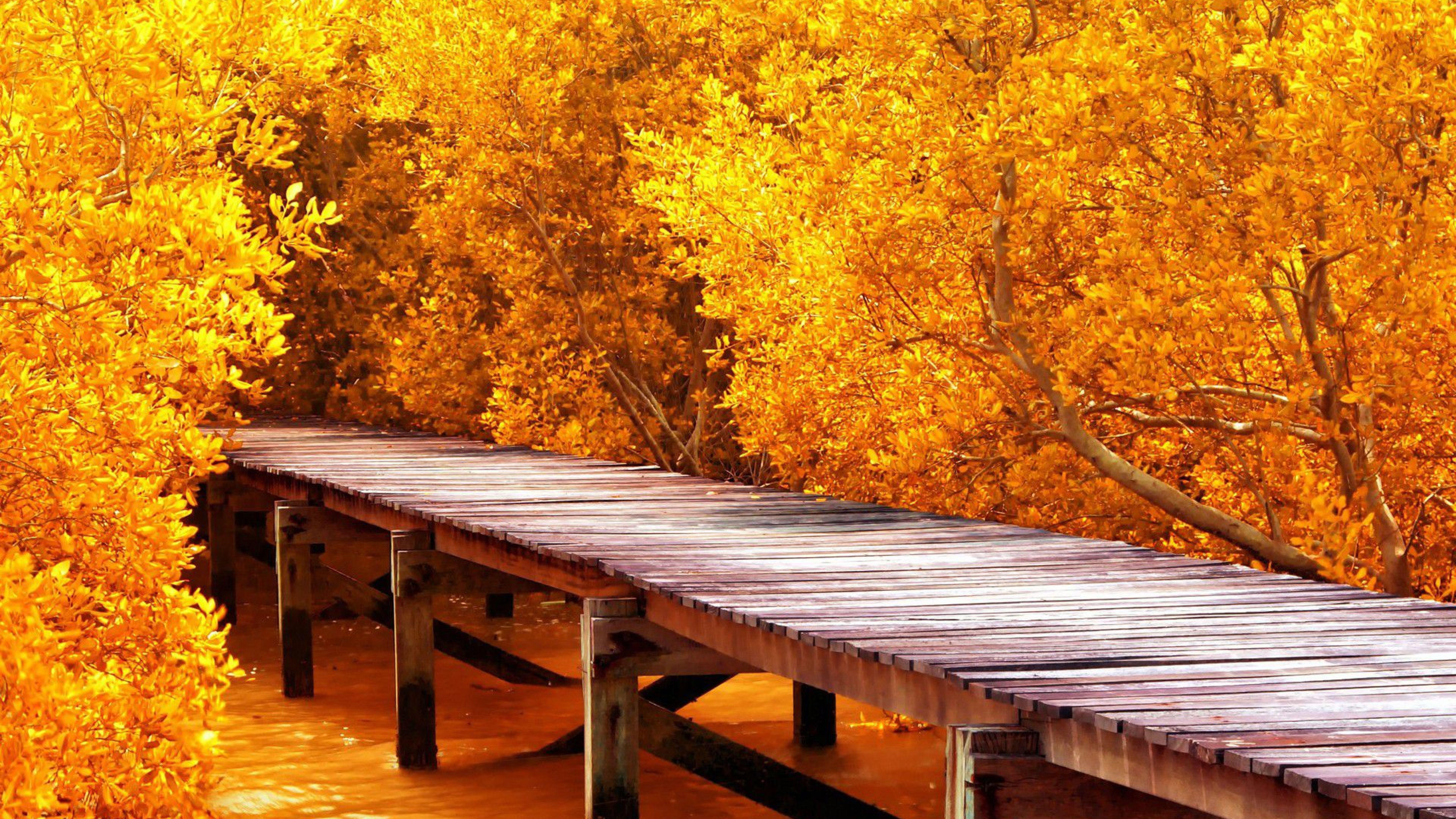 8k Ultra Hd Nature Wallpapers Top Free 8k Ultra Hd Nature