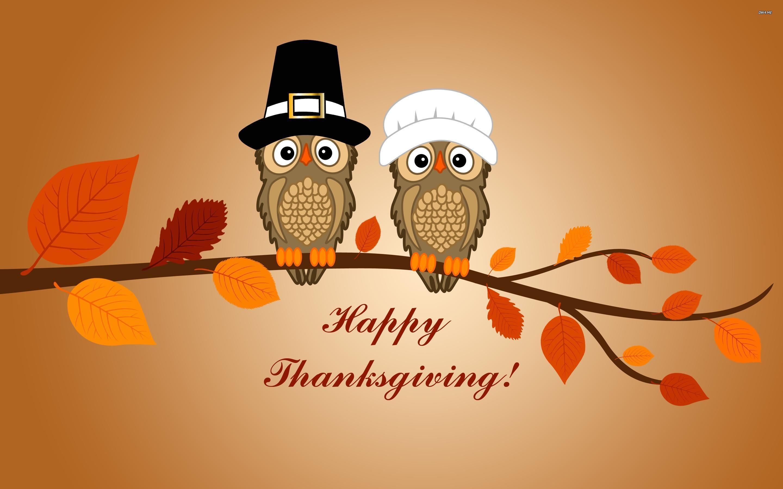 Funny Thanksgiving Desktop Wallpapers Top Free Funny Thanksgiving Desktop Backgrounds Wallpaperaccess