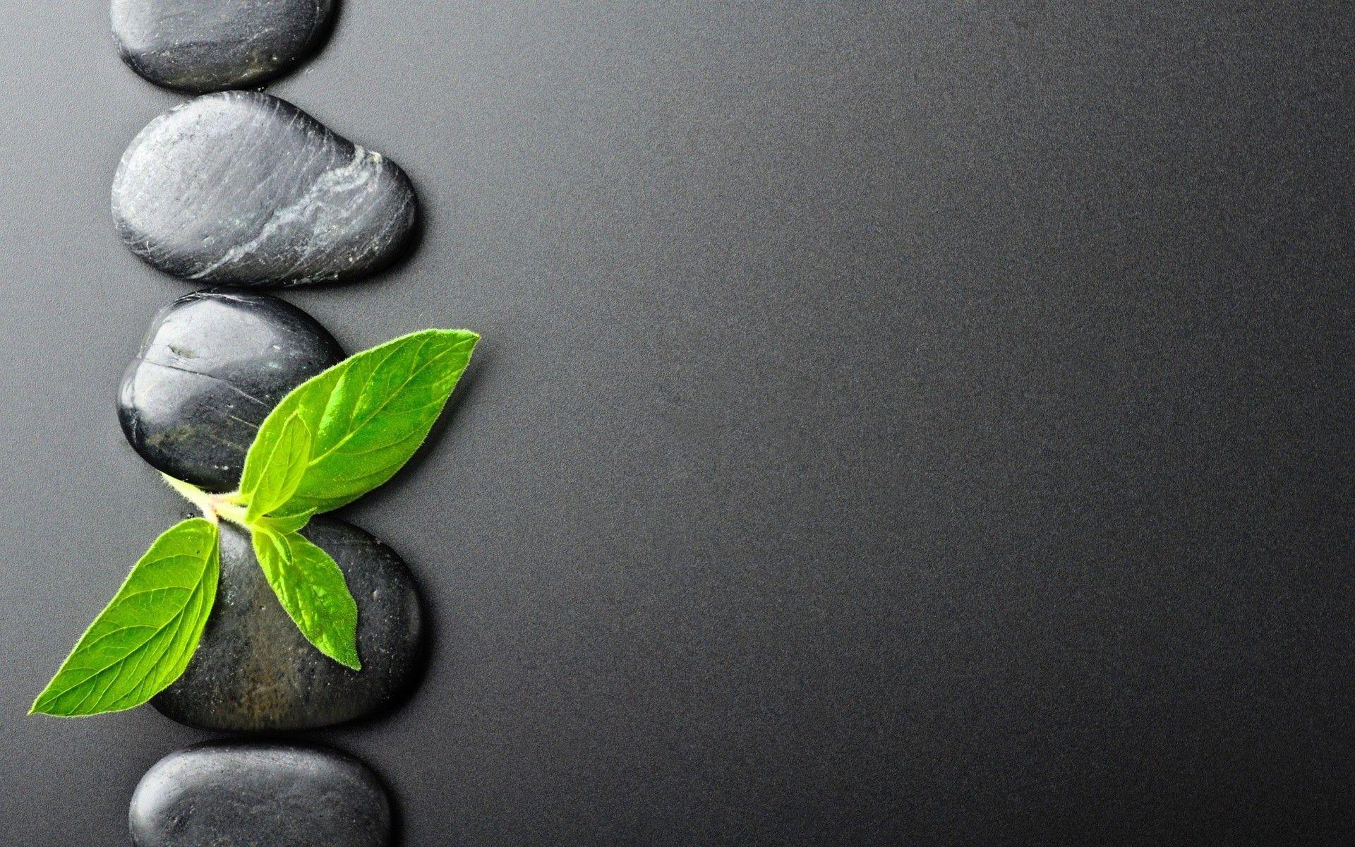 Zen Desktop Wallpapers Top Free Zen Desktop Backgrounds Wallpaperaccess