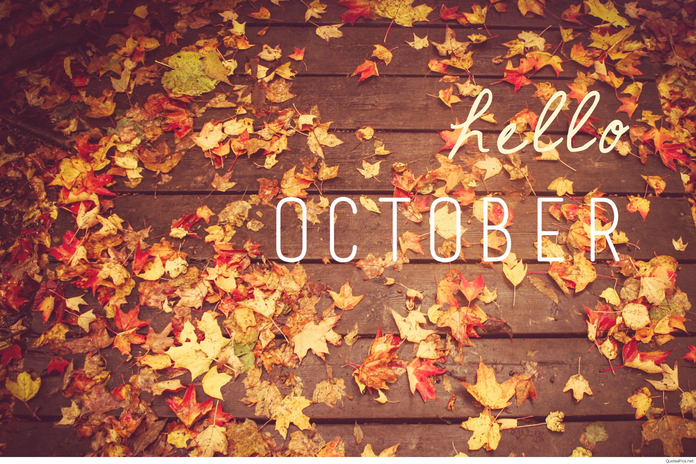 Hello Autumn Wallpapers Top Free Hello Autumn Backgrounds Wallpaperaccess