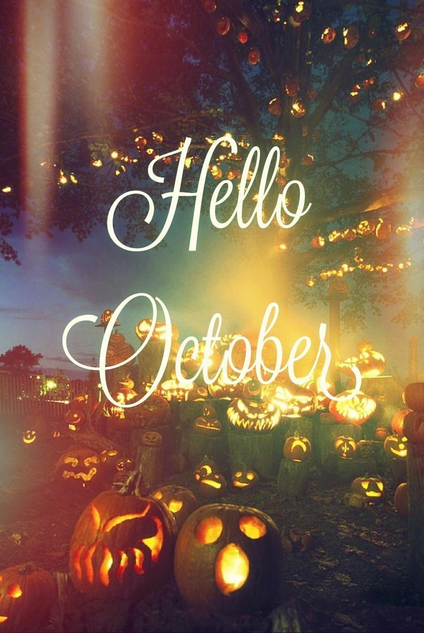 Hello October with Pumpkin Wallpapers   Top Free Hello October ...