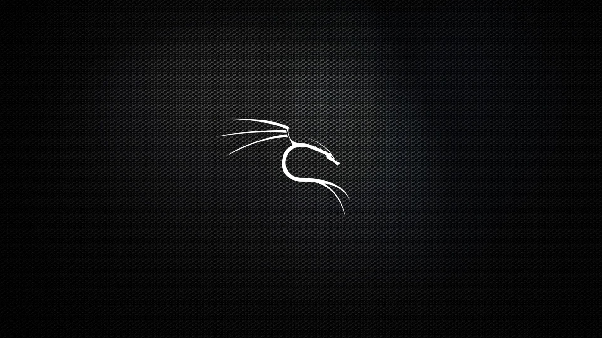Kali Linux Wallpapers Top Free Kali Linux Backgrounds