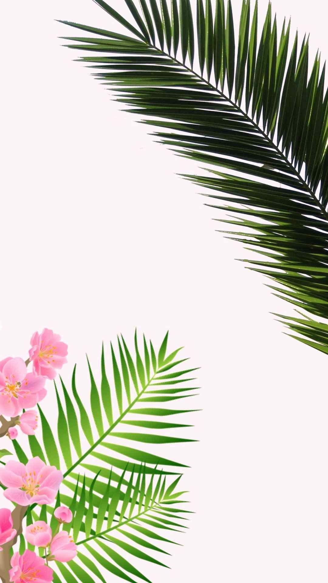 Palm Leaves Iphone Wallpapers Top Free Palm Leaves Iphone Backgrounds Wallpaperaccess Tropical leaves free background free photo. palm leaves iphone wallpapers top