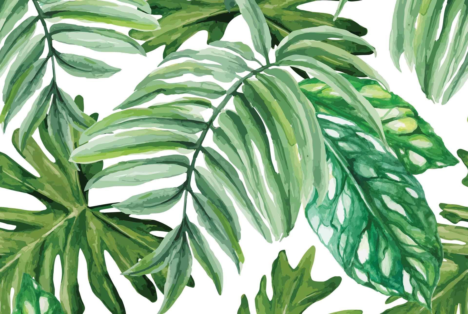 Watercolor Palm Leaves Wallpapers Top Free Watercolor Palm Leaves Backgrounds Wallpaperaccess We have 62+ amazing background pictures carefully picked by our 1920x1200 tropical waterfall hd wide wallpaper for 4k uhd widescreen desktop & smartphone. watercolor palm leaves wallpapers top
