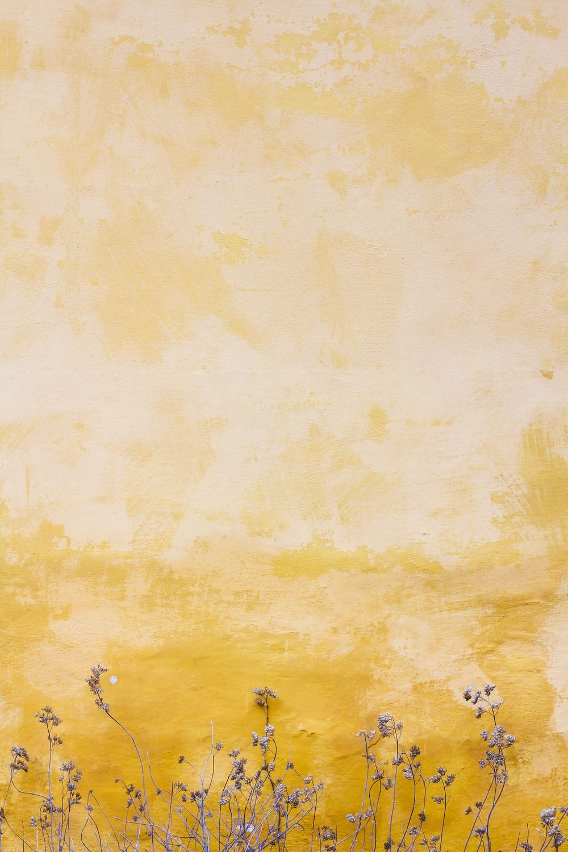 Hình nền màu vàng 1000x1500: Tải xuống HD miễn phí [HQ]