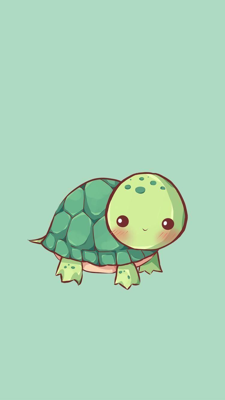 Cute Cartoon Turtle Wallpapers Top Free Cute Cartoon Turtle Backgrounds Wallpaperaccess